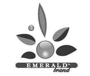emeraldbrand.com logo