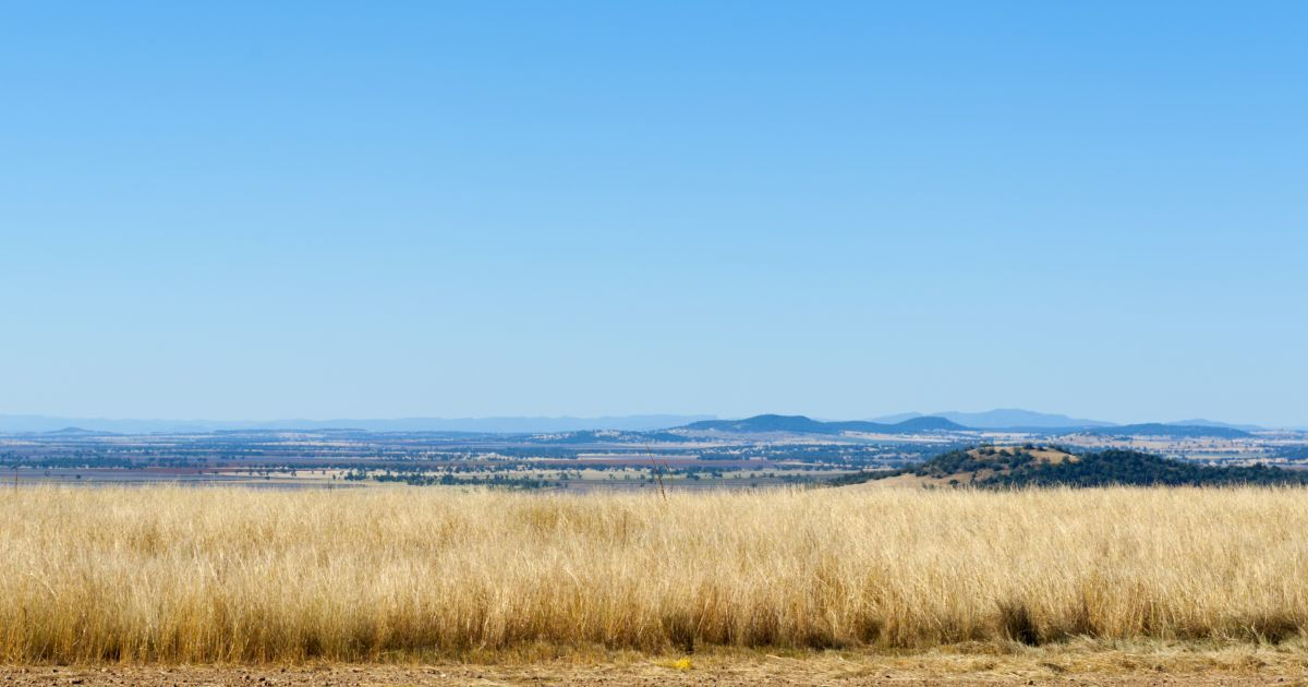 Liverpool plains landscape