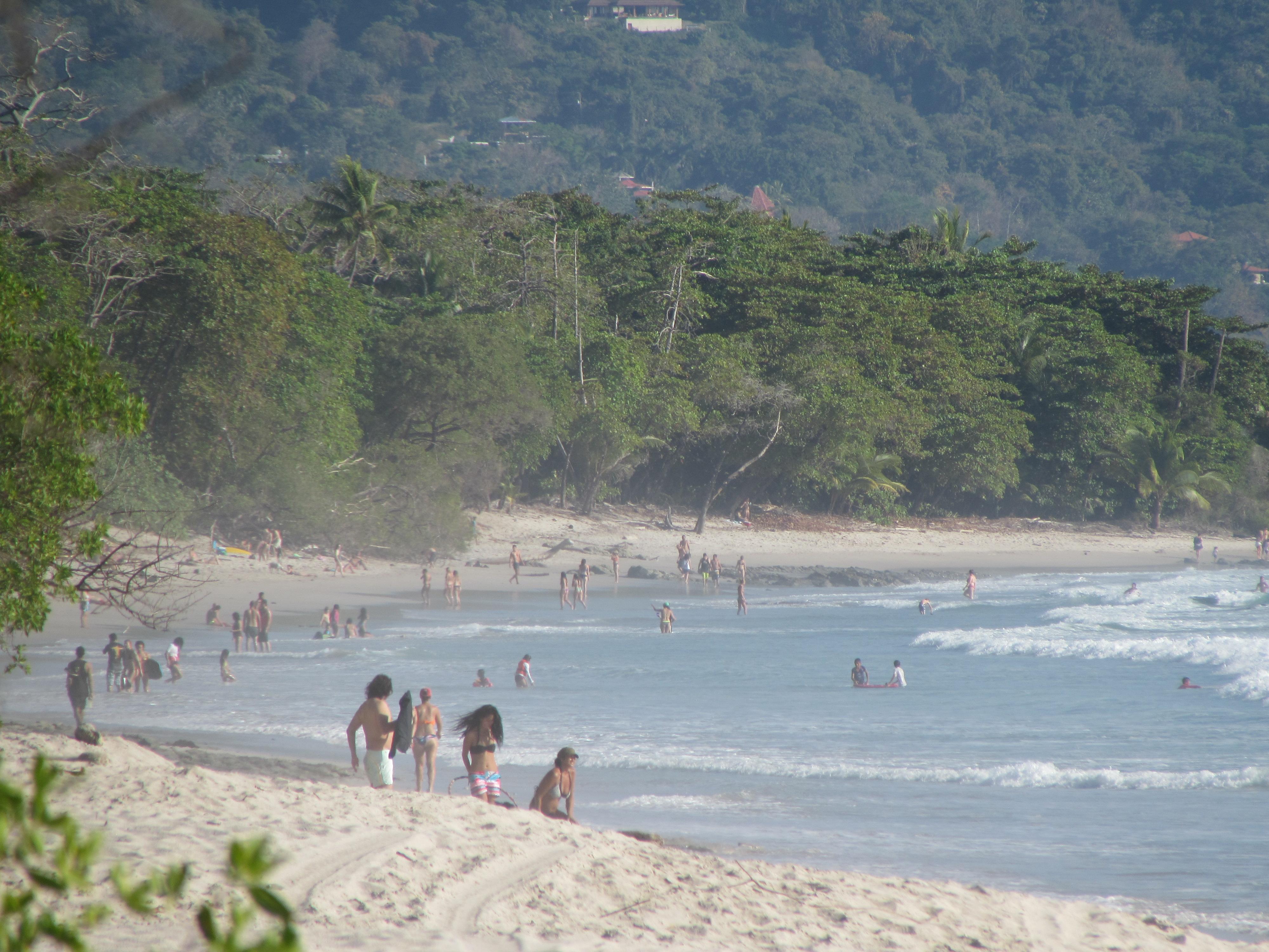 Santa Teresa Jungle