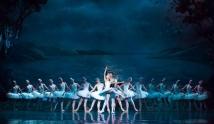 Ballet da Rússia - Lago dos Ci...