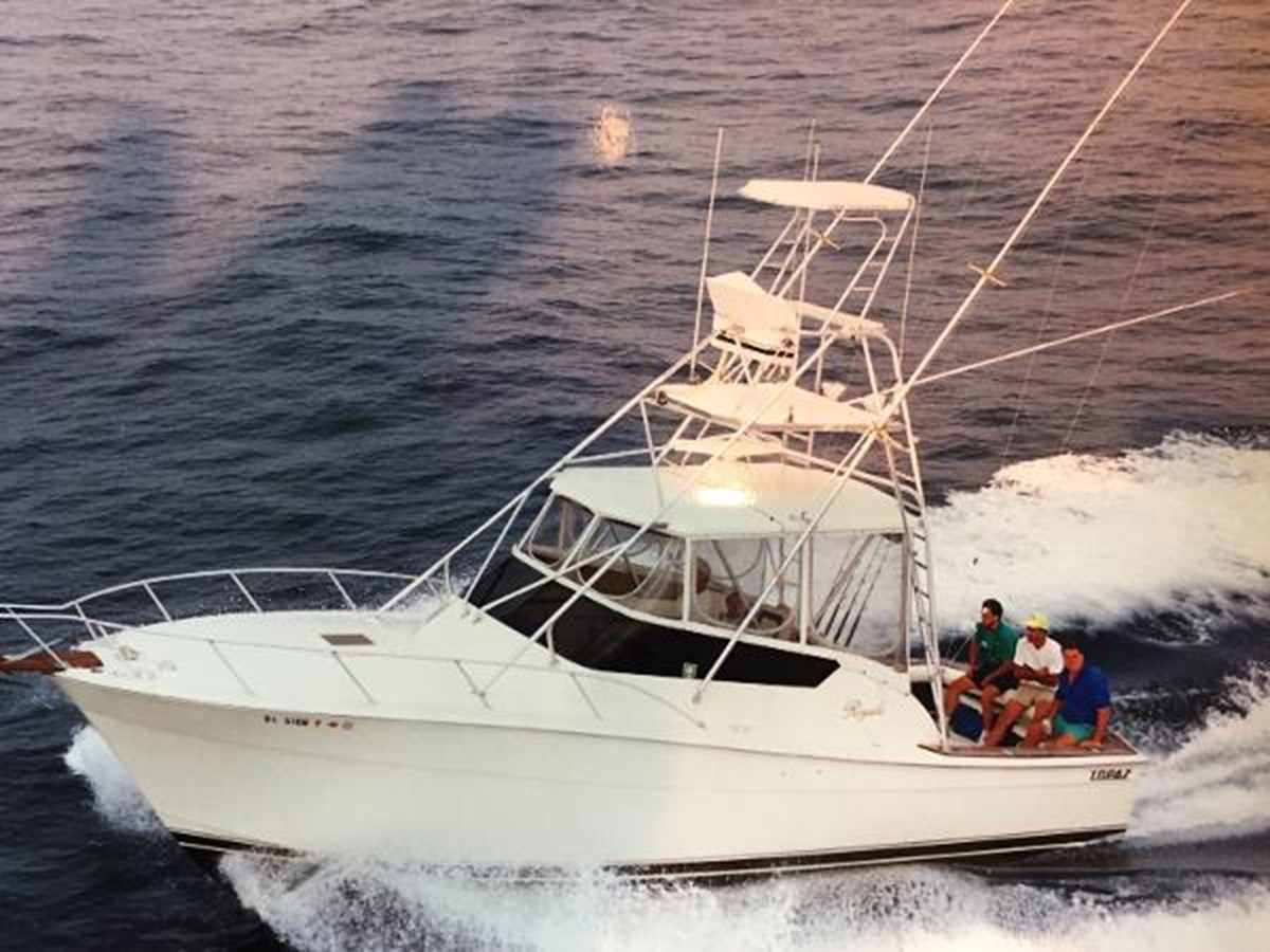 Topaz Royale 1991 For Sale In Indian River Delaware