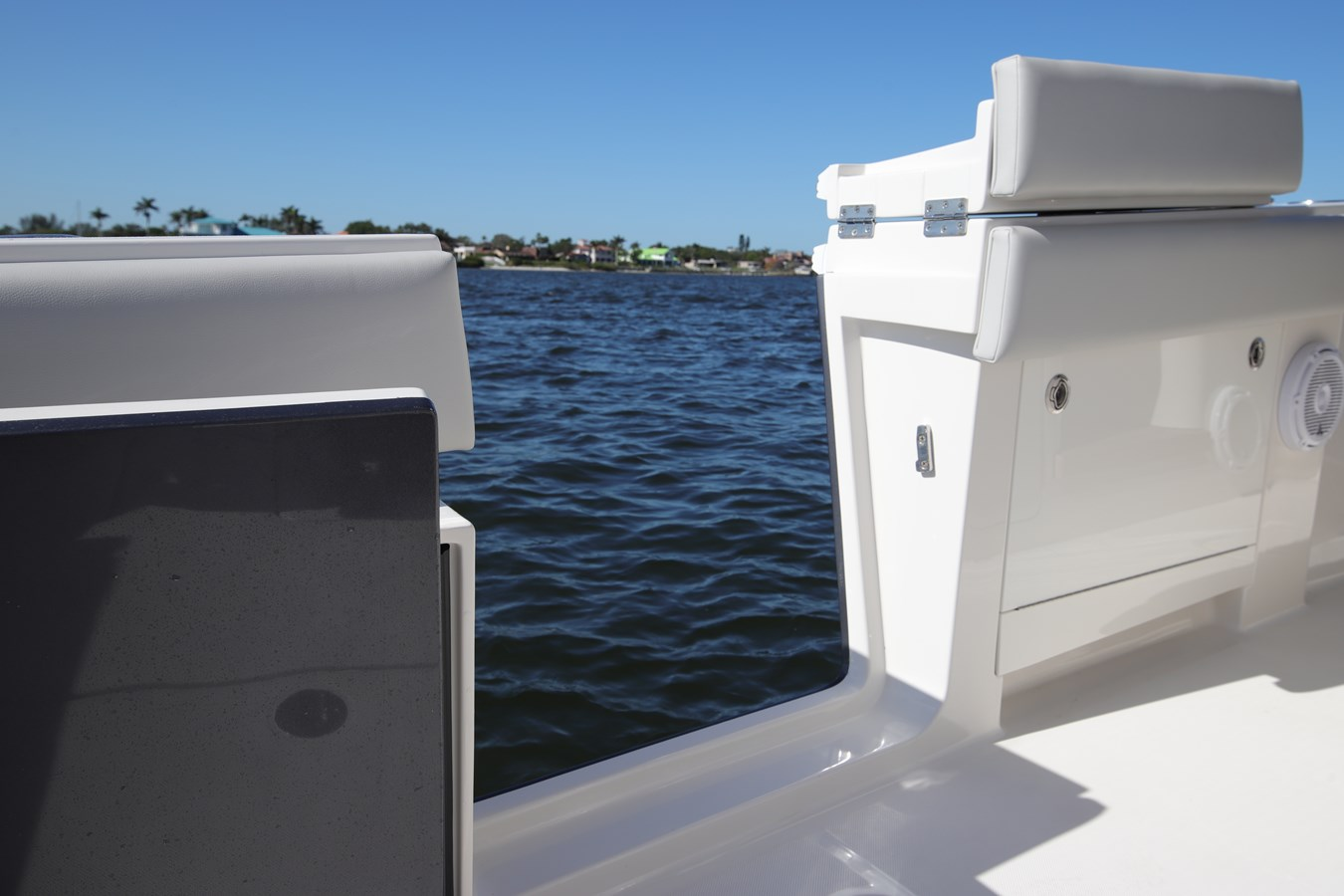 Dive Door - 43 JUPITER For Sale