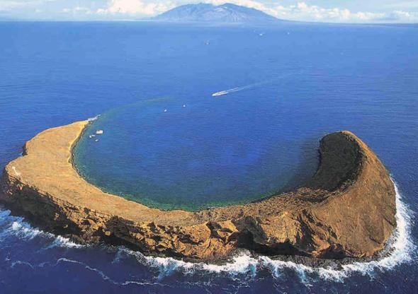 Afternoon Molokini Ocean Raft