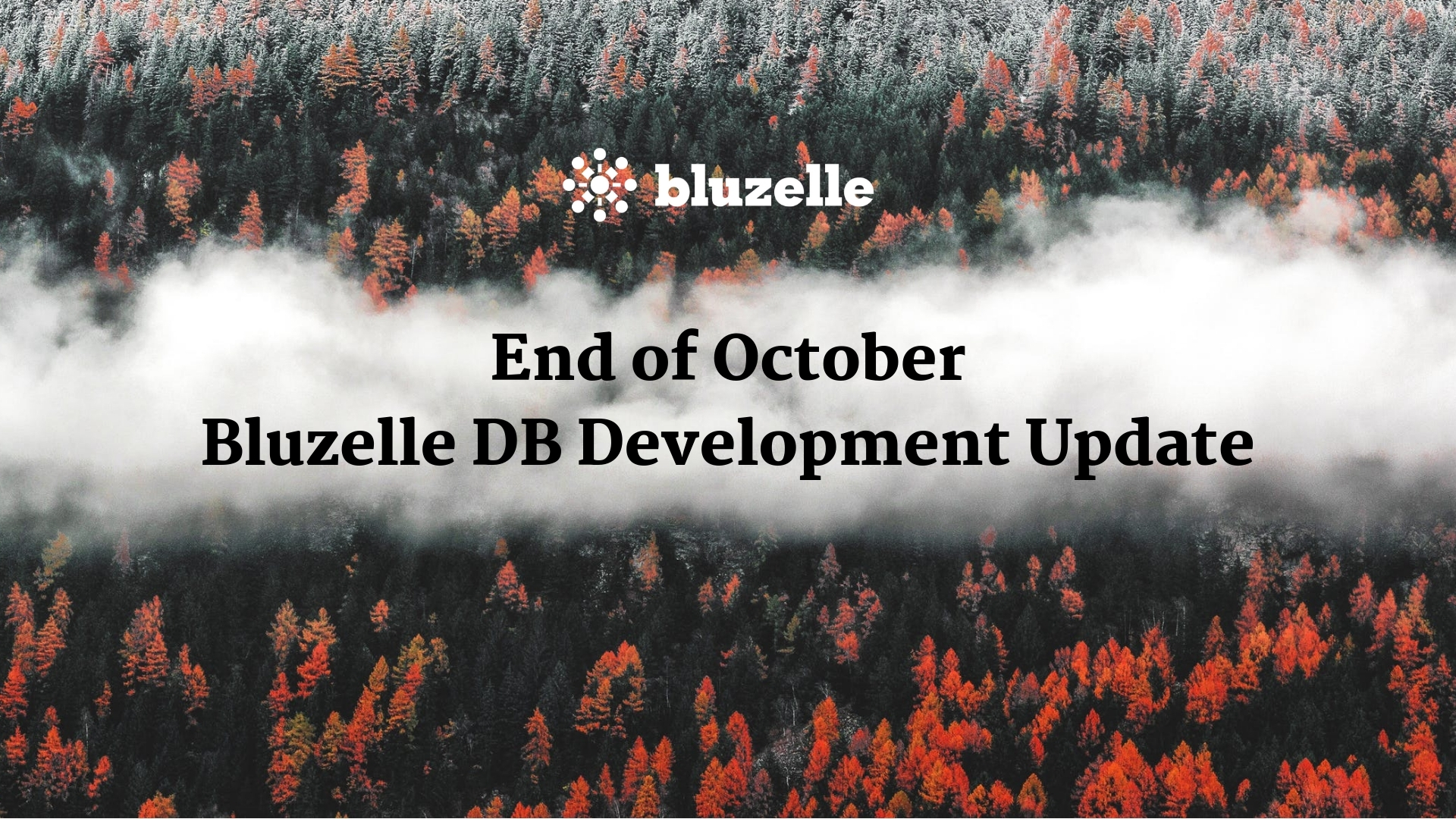 End of October Bluzelle DB Development Update