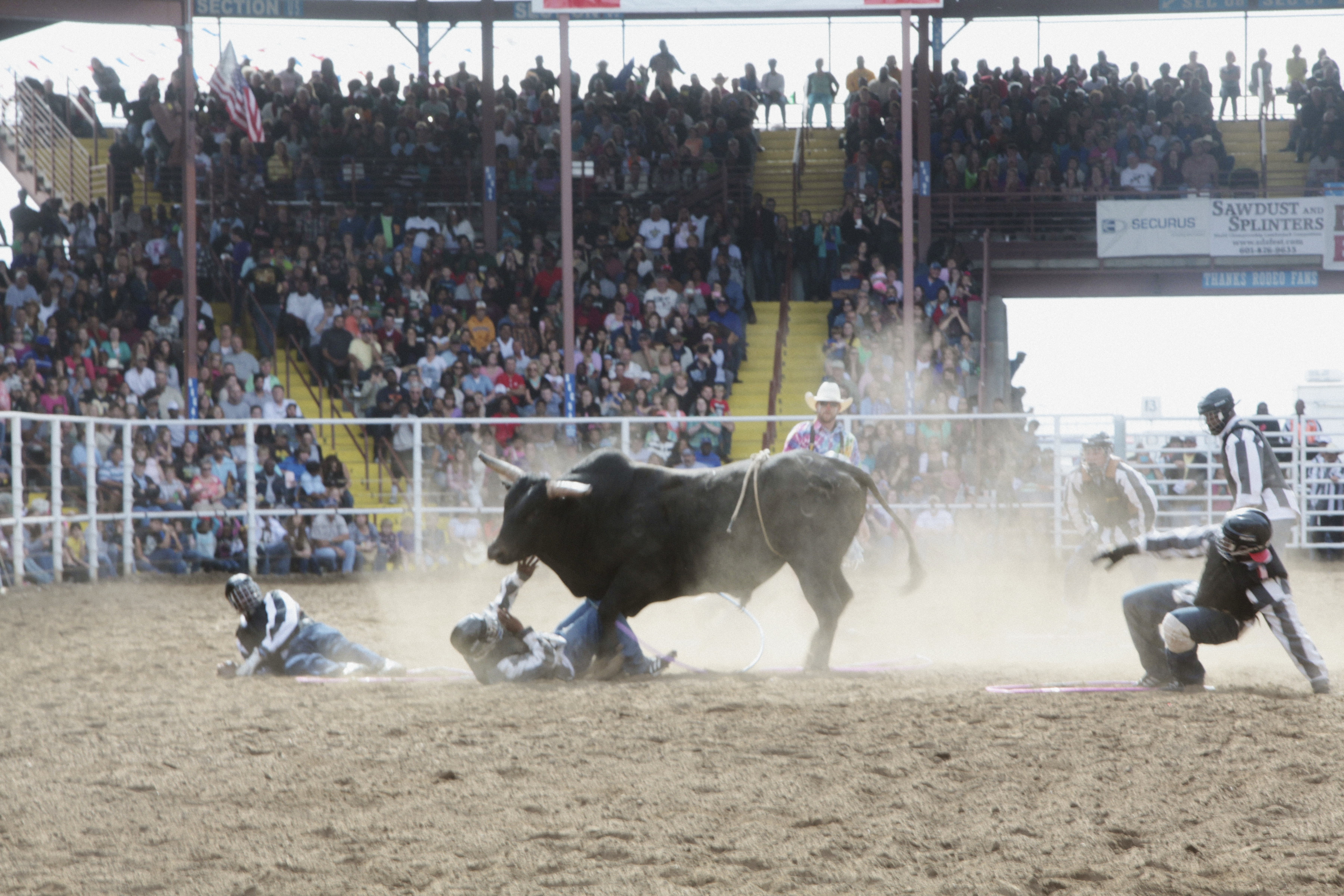 BMA Stories | Louisiana State Penitentiary's Rodeo: A