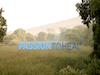 <i>Passion to Heal</i>&reg;