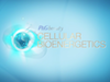 Pioneering Cellular Bioenergetics in Skin Care
