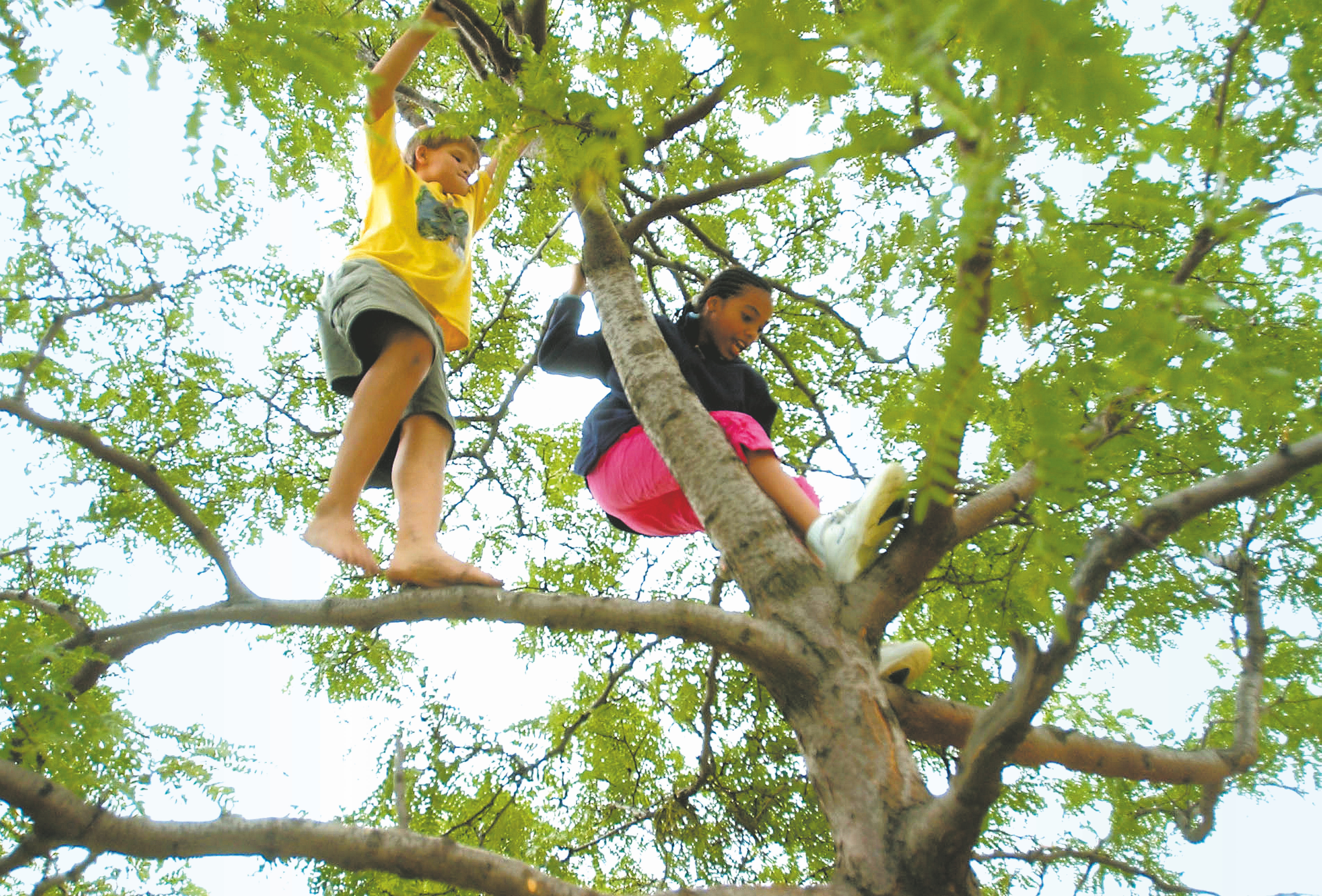 Buffalo News file photo    Many people believe children need to spend more time outdoors.