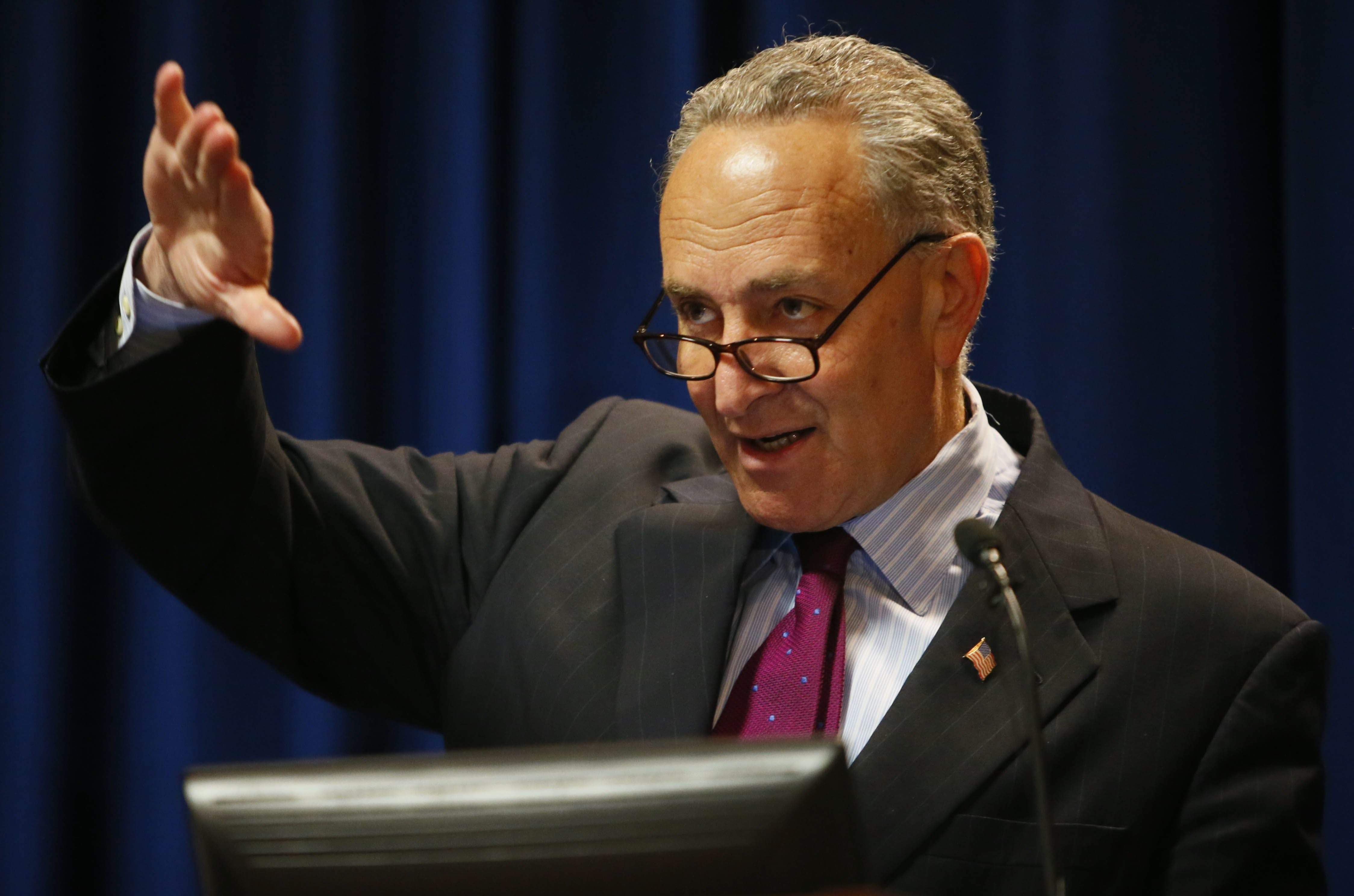 Sen. Charles E. Schumer wants Department of Homeland Security grant.