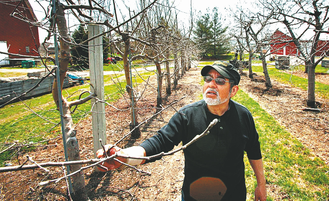 Oscar Vizcarra, owner of Becker Farms and Vizcarra Vineyards, says the immigration bill streamlines the agricultural guest worker program and makes it easier for farmers to hire laborers year-round. (Derek Gee/Buffalo News)