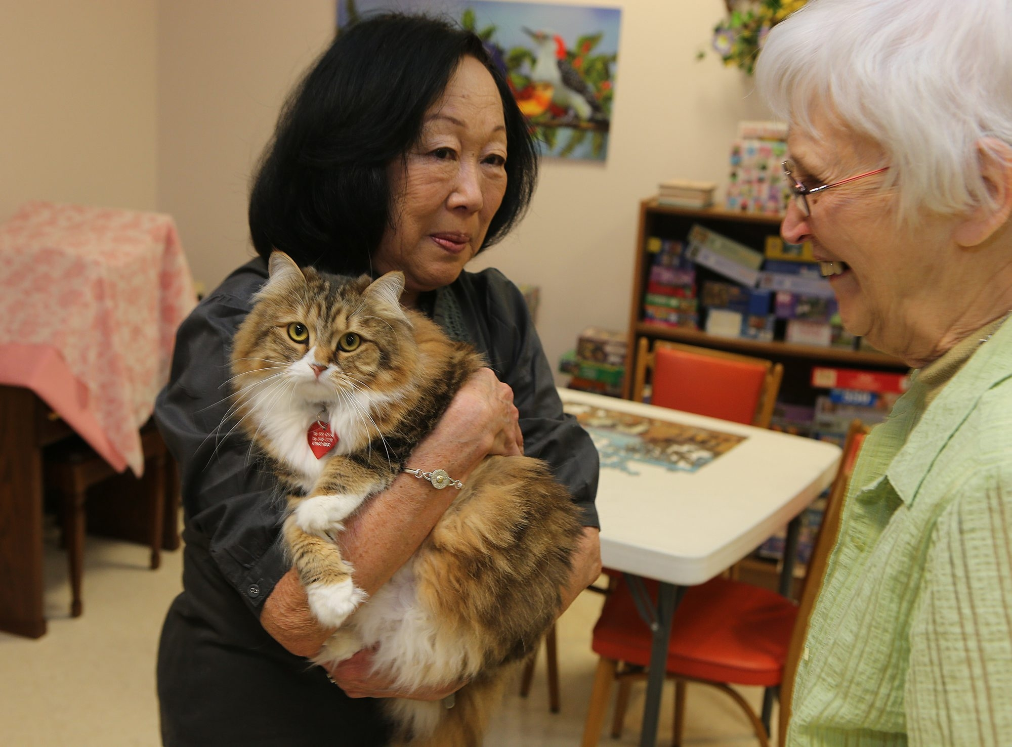 Harolyn Craig, left, holds her cat, Shu Shu, as Sister Marcia Klawon, right, looks on, at St. Mary of the Angels in Williamsville, Wednesday, April 17, 2013.  (Charles Lewis/Buffalo News)