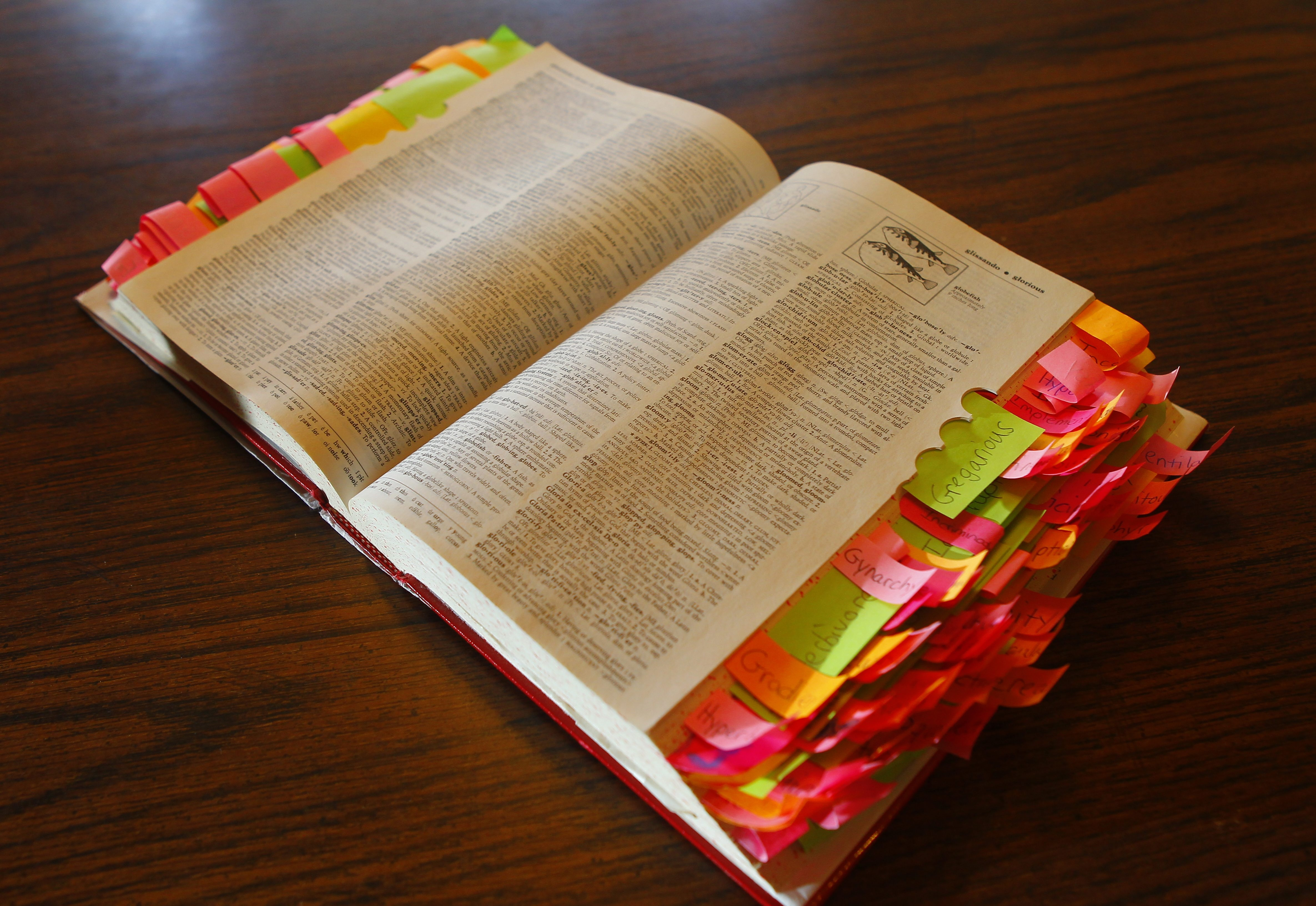 A blizzard of colorful sticky notes bookmarks the Pivarunas family's well-used dictionary.