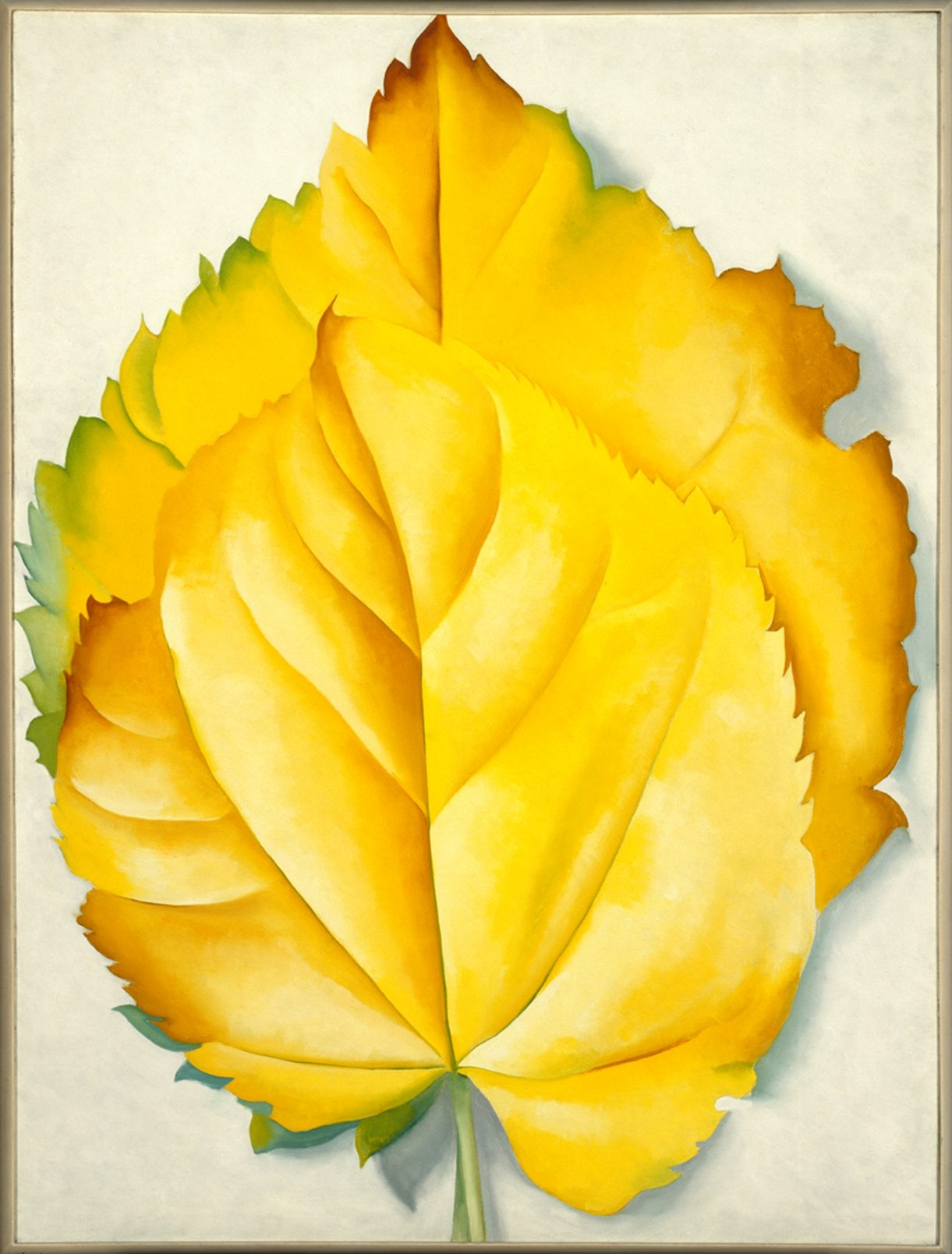 """""""Yellow Leaves,"""" a 1928 painting by Georgia O'Keeffe that shows her turn away from abstraction and toward her signature style of outsized studies of nature, has a prized place in """"American Moderns."""""""
