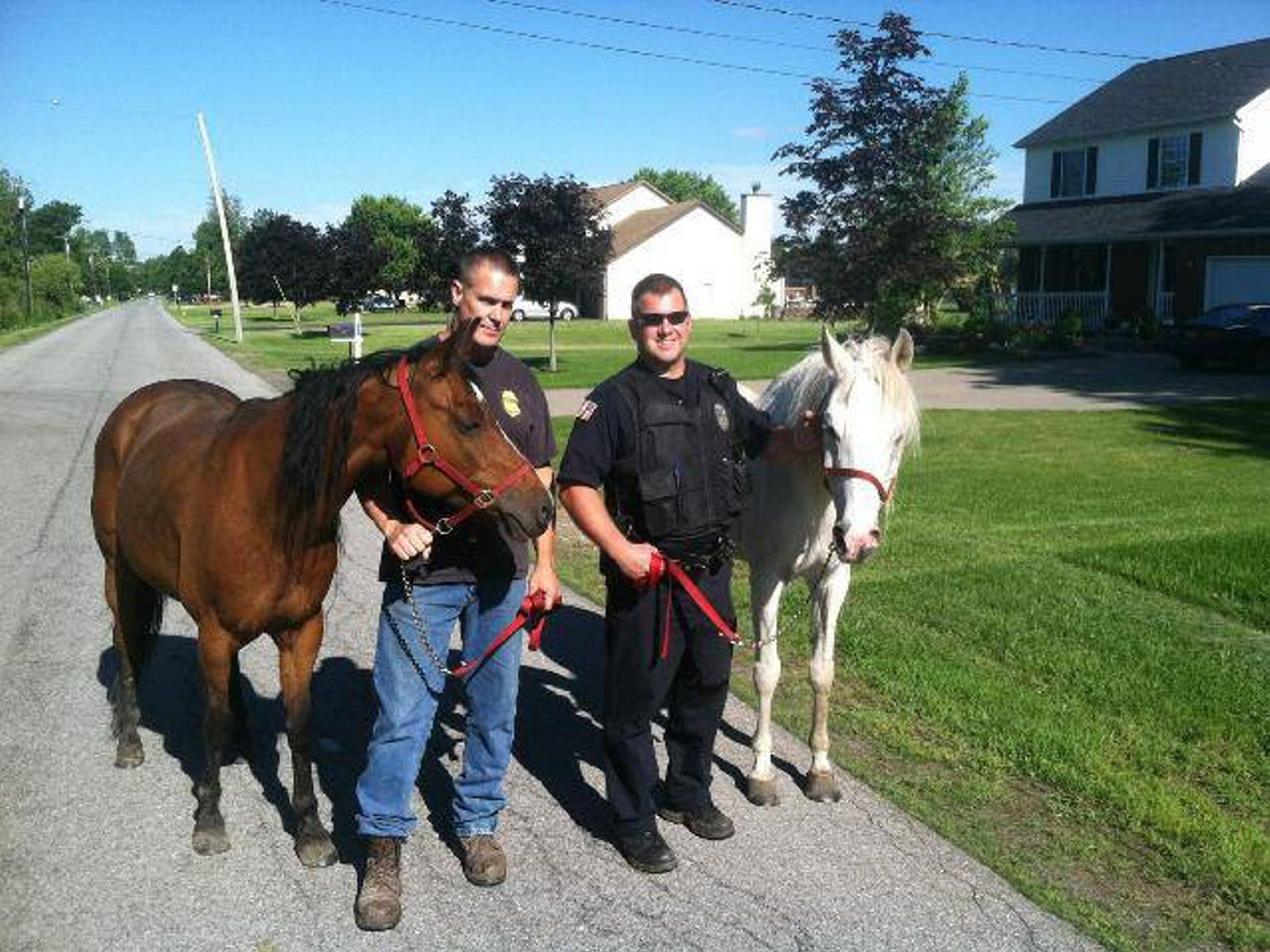Officer Brian Firestone and a neighbor, Mark Zulawski, returned the escaped horses, Molly, left, and Akira, to their Lancaster owner Tuesday afternoon.