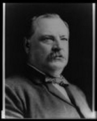 Grover Cleveland began his political career in Buffalo.