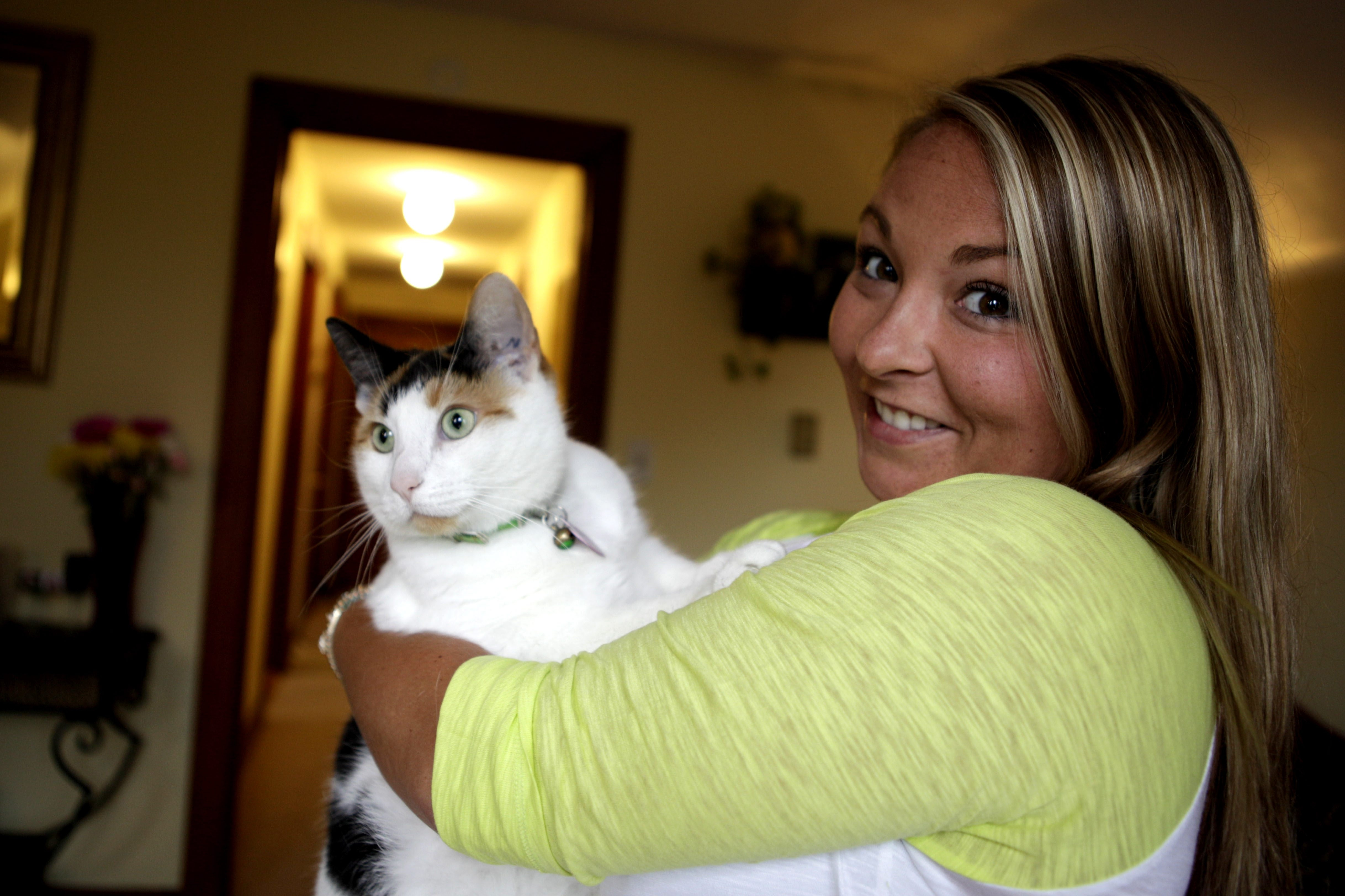 Stephanie Serafini takes in foster cats at her home in South Buffalo. Sweet-natured Clawdia was her first foster cat.