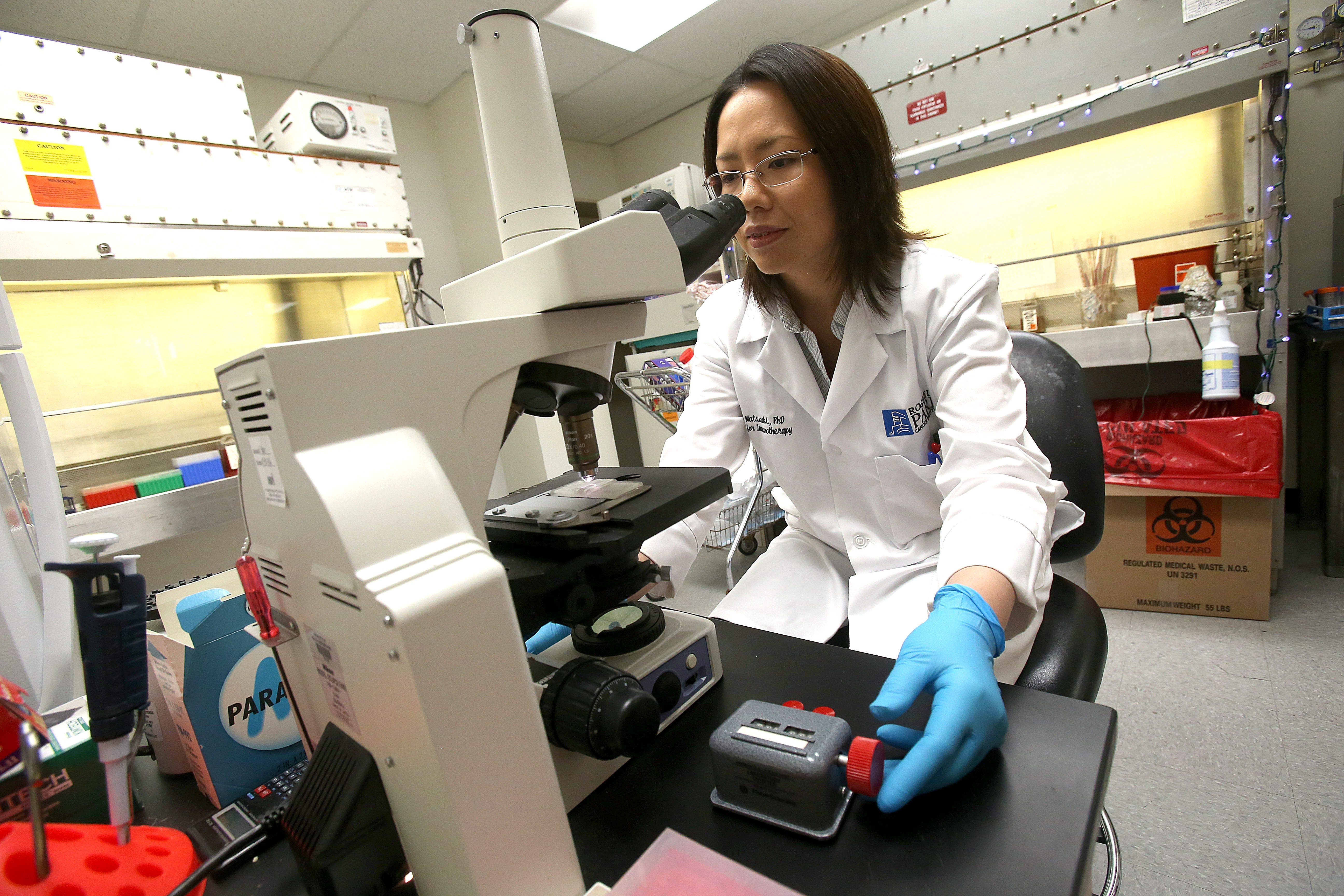 Roswell Park's Immune Analysis Facility director Dr. Junko Matsuzaki counts lymphocytes in a lab at the cancer center.
