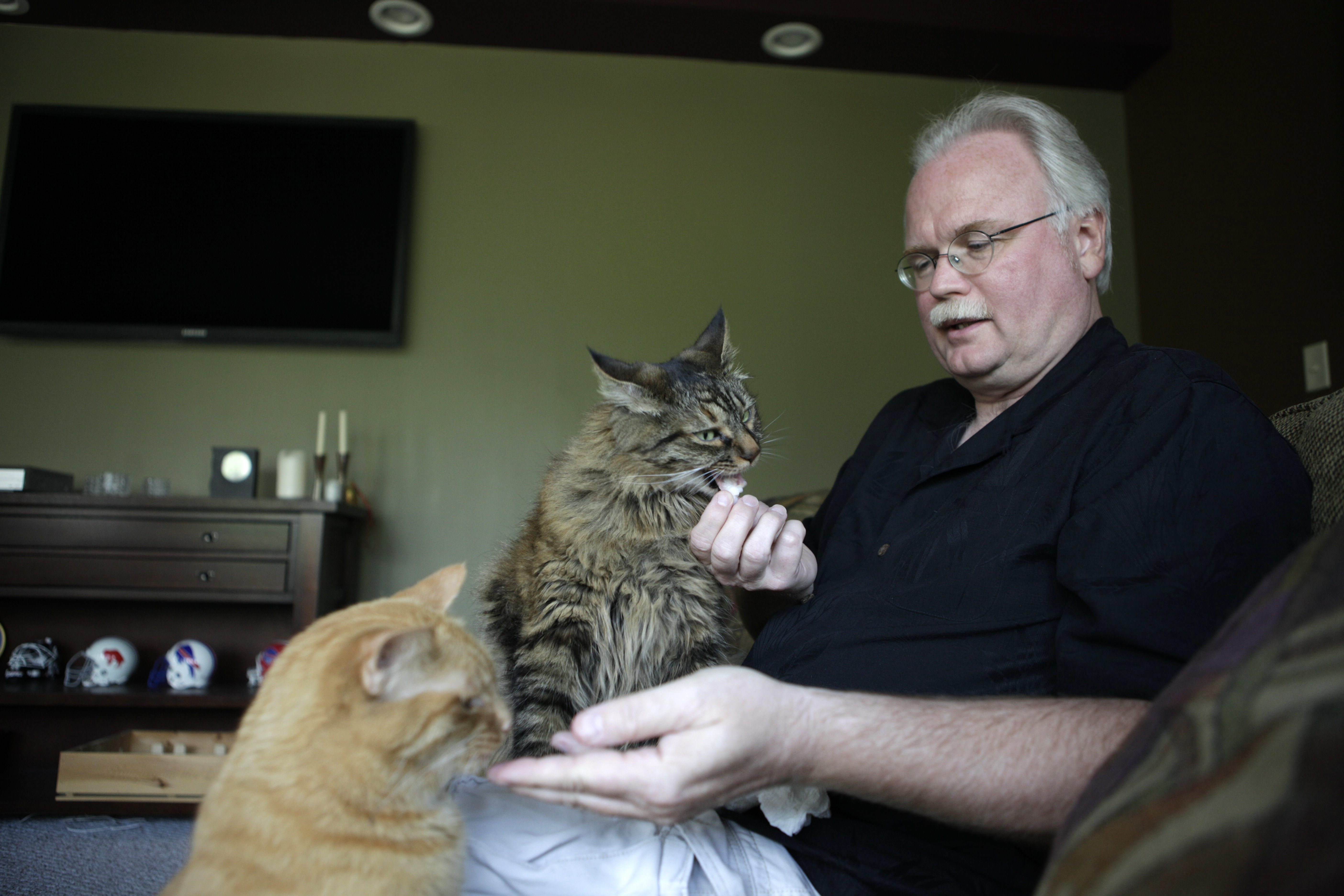 Tom Campbell has been trying to find a home for his two cats after his fiancee moved out due to her severe allergies.