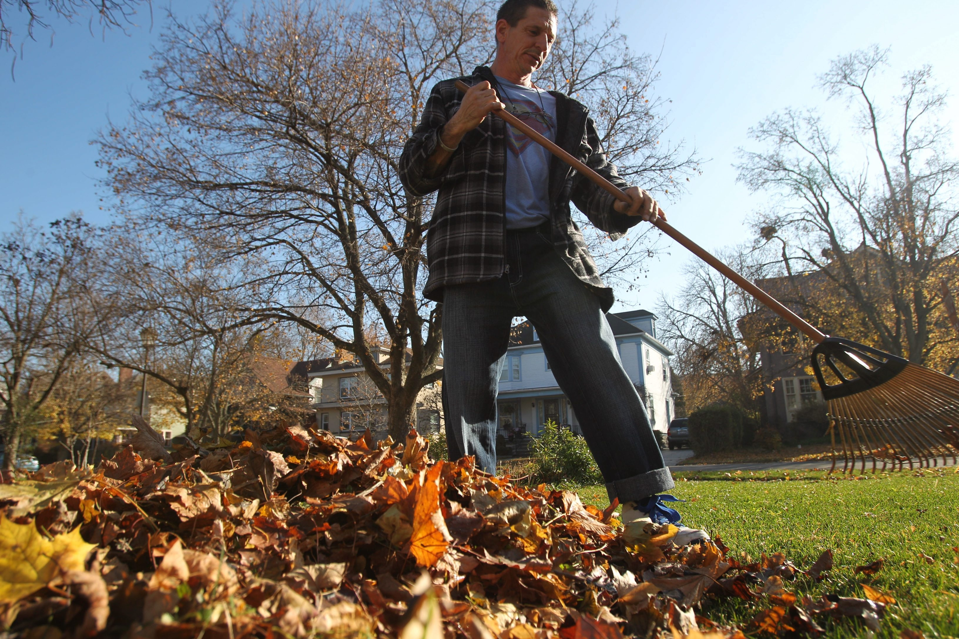 Paul Walters to the Town of Tonawanda took time to rake a friend's yard last fall, which experts say usually is a good move for your lawn.