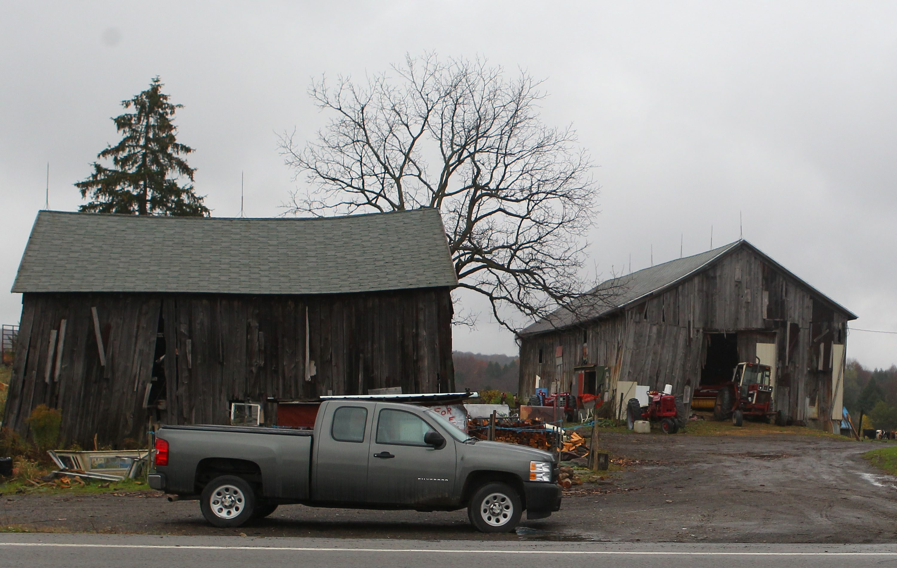 Mary Lou Steff, 66, reportedly was made to live in the ramshackle barn on her brother's farm on Route 39 in Springville.