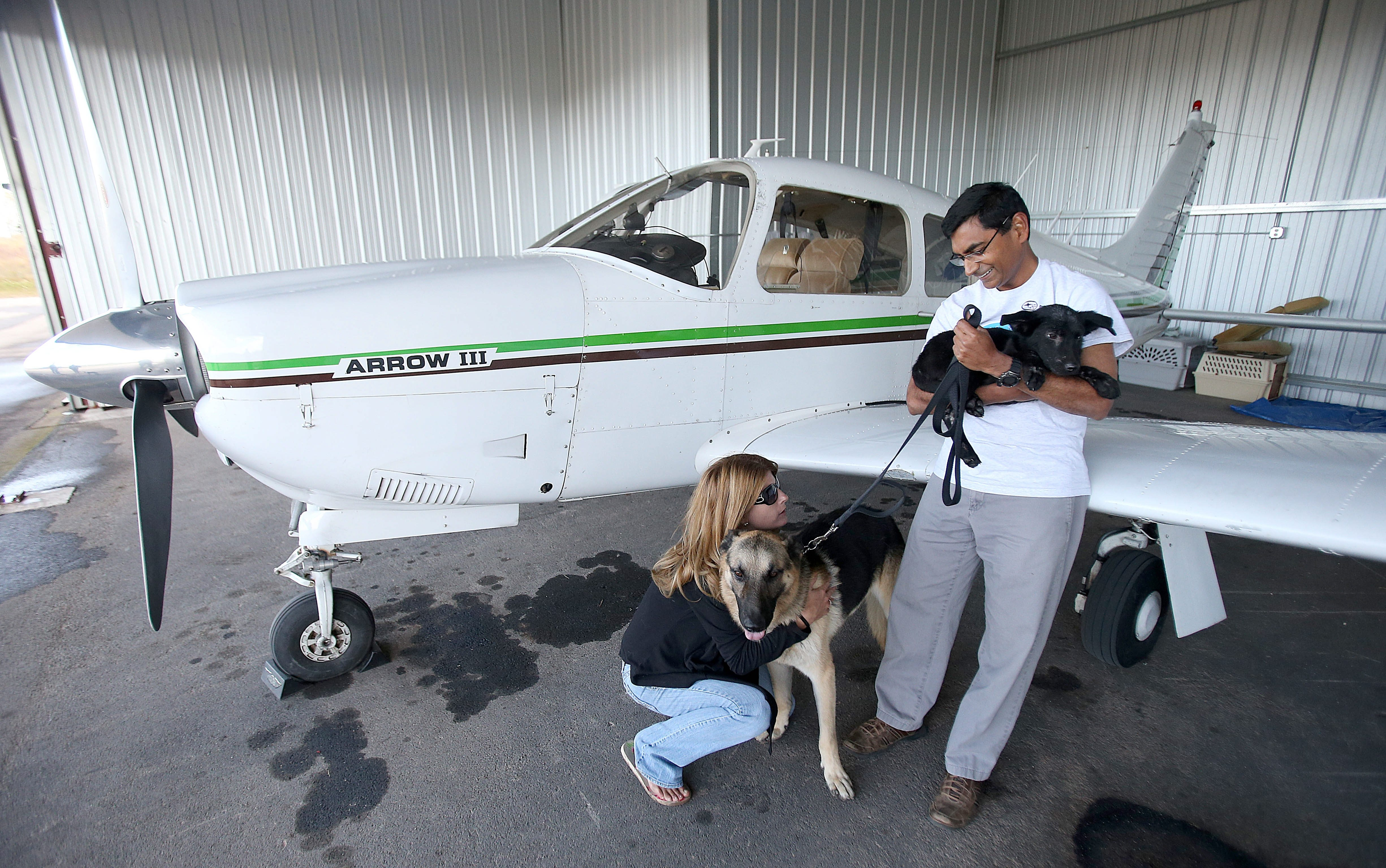 Pilot Mahesh Sankaran holding one of the rescued puppies and foster pet parent Jeanette Flynn, visiting with a rescued german shepherd, visit with the happy dogs near Sankaran's plane at Lancaster Airport on  Monday, Oct. 14, 2013.