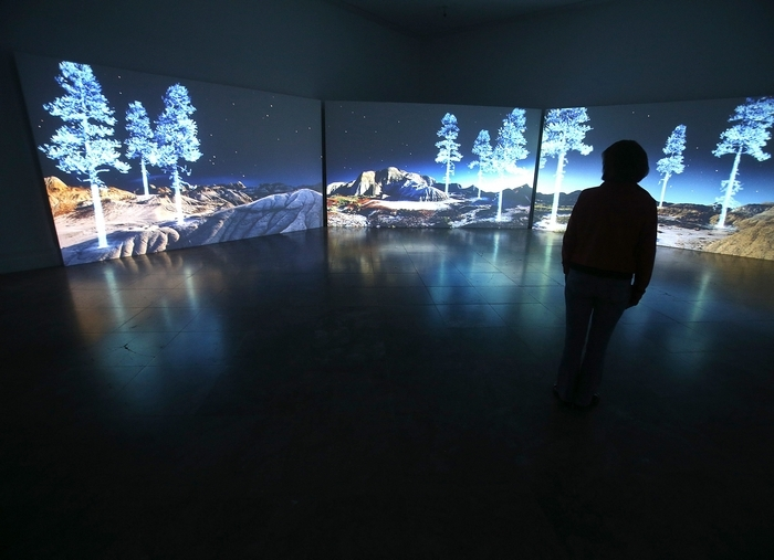 Kelly Richardson's video installation at the Albright Knox Art Gallery is a peaceful viewing place.  Maria Scully-Morreale enjoys some alone time on Friday, March 22, 2013.  (Robert Kirkham/Buffalo News)