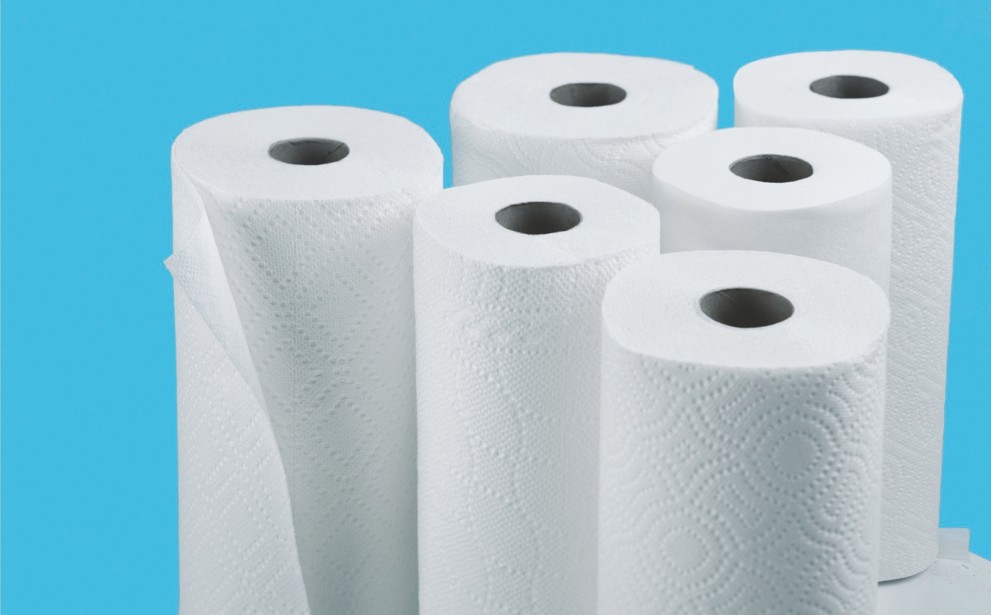 For kitchen cleanup, a fresh paper towel is a better choice than a germy sponge.