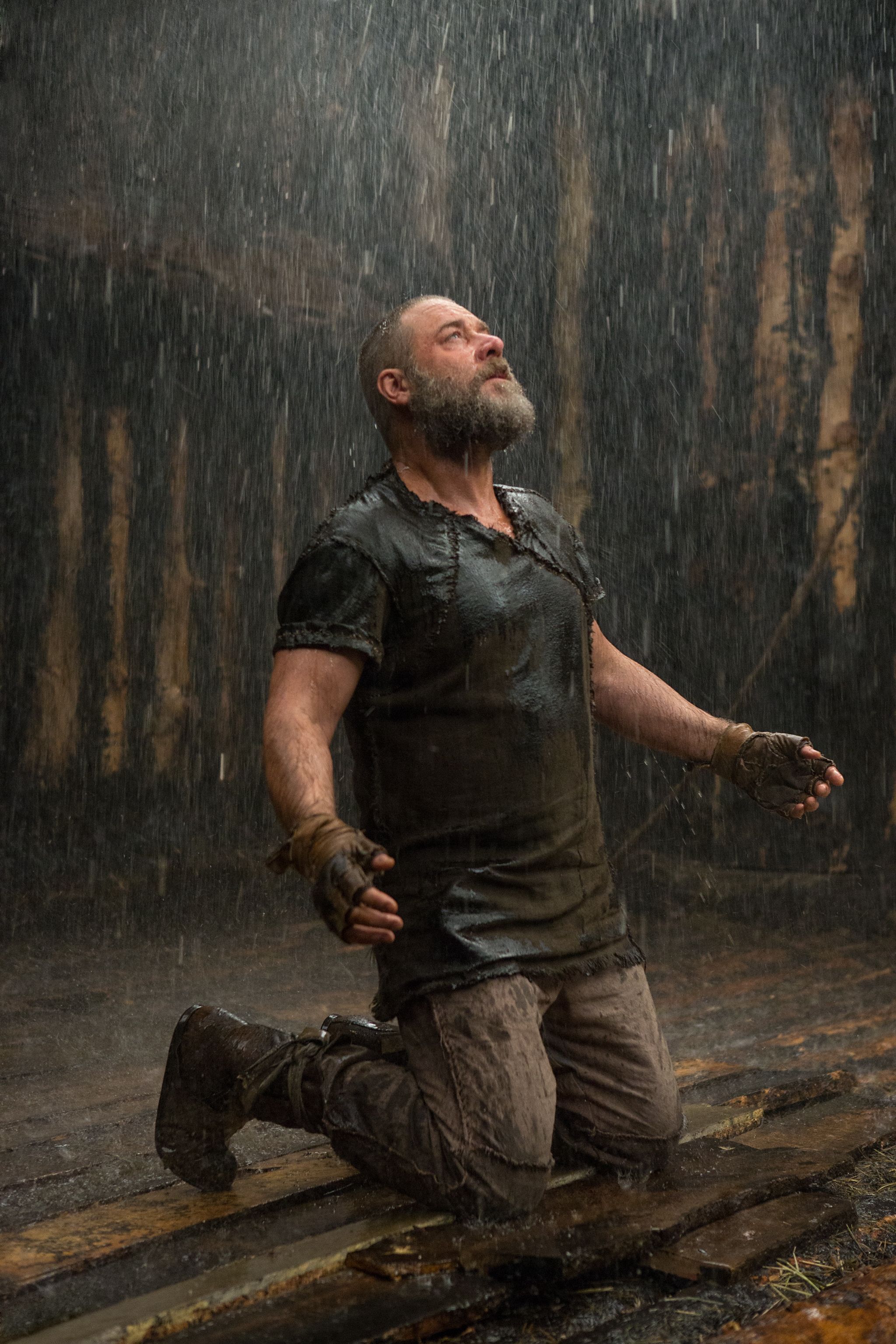"Russell Crowe plays the title character in ""Noah,"" now playing in area theaters."