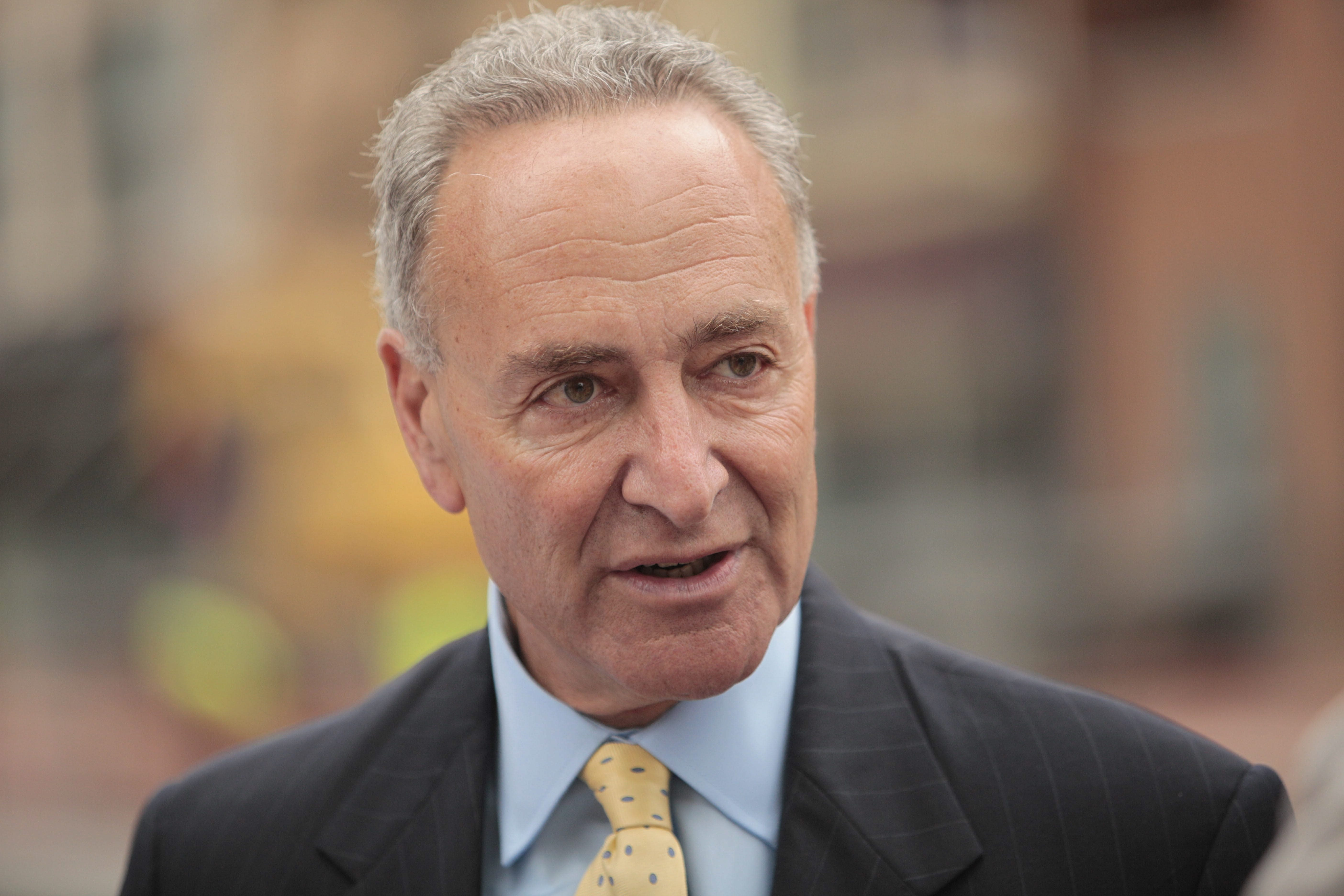Sen. Charles Schumer will be part of panel expected to meet as soon as next week.