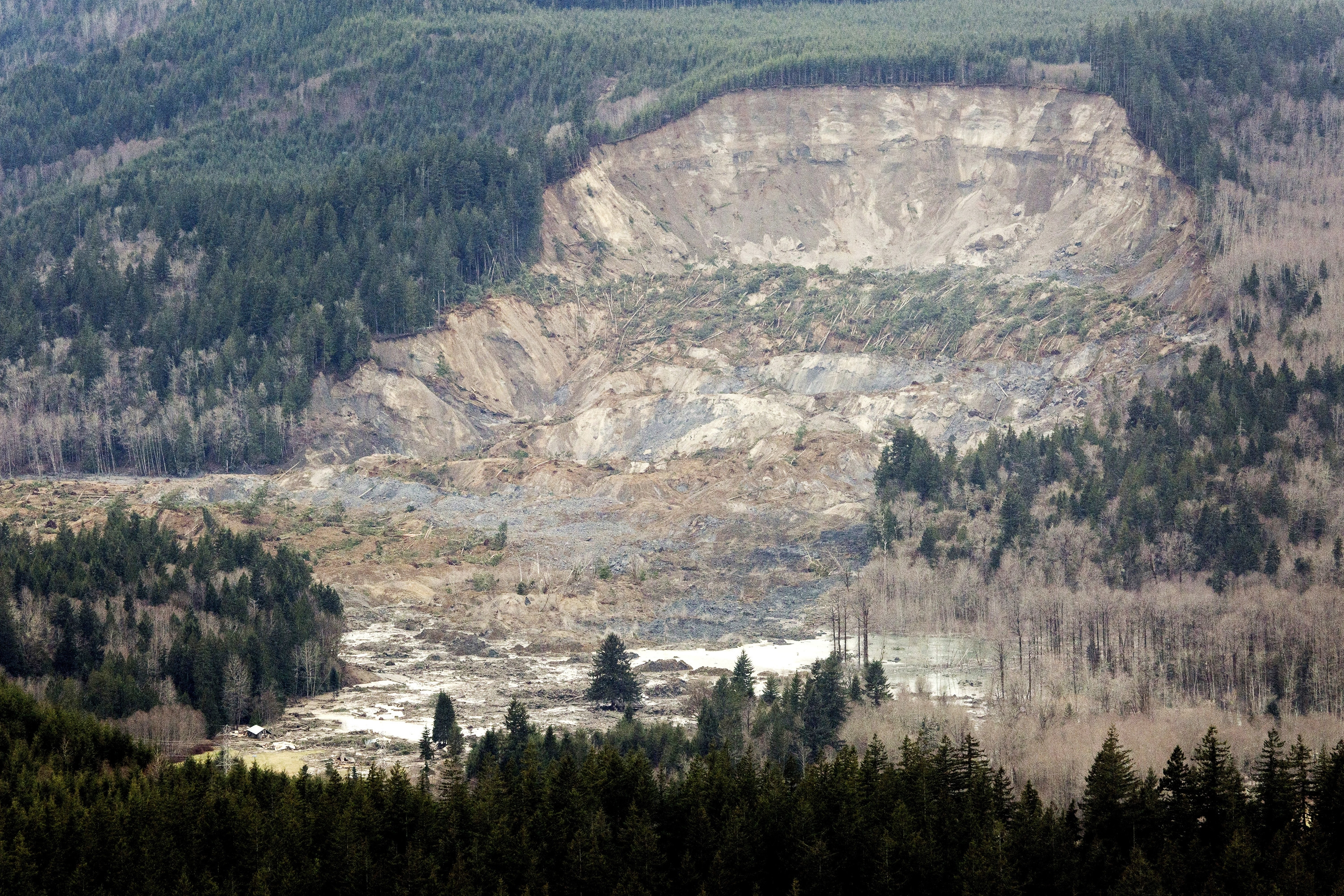 A side of this hill disappeared in Saturday's fatal mudslide between towns of Darrington and Arlington, Wash. Two neighborhoods on the Stillaguamish River were destroyed.