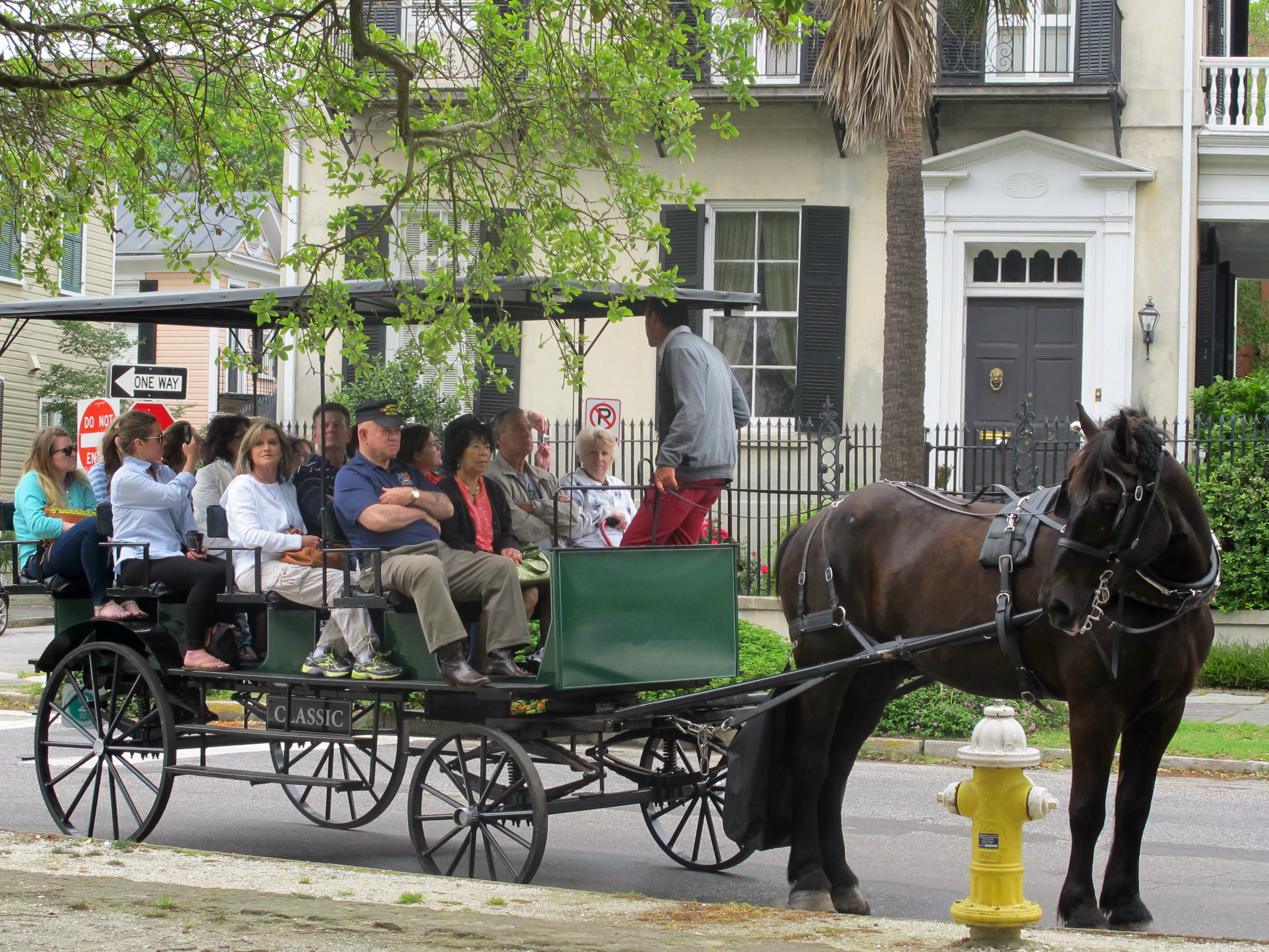 Horse-drawn carriage rides are popular in Charleston, S.C., which has become a popular spot for destination weddings.