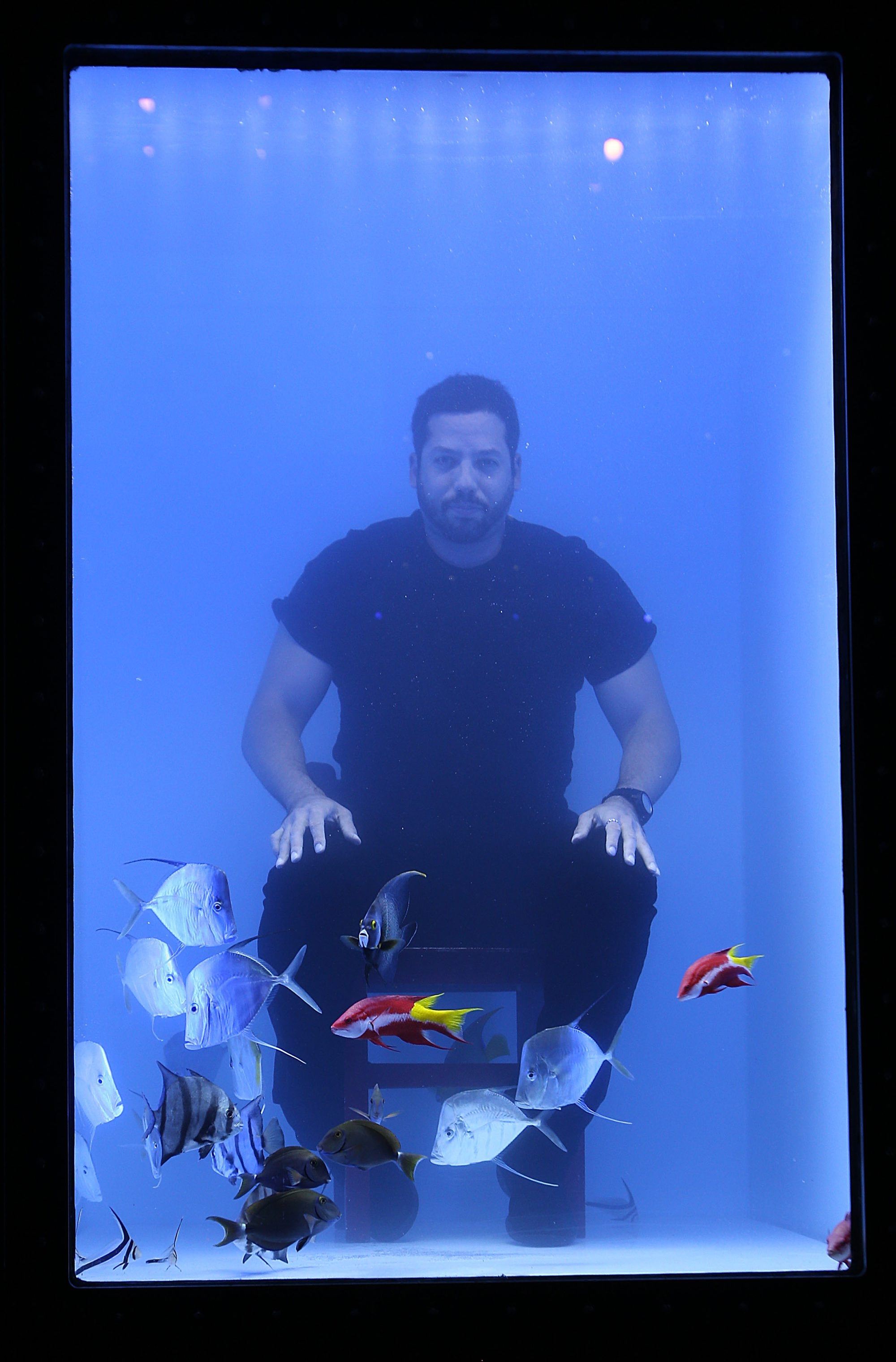 Magician David Blaine prepares for his performance by entering a fish-filled water tank at Alumni Arena on the University at Buffalo North Campus in Amherst.