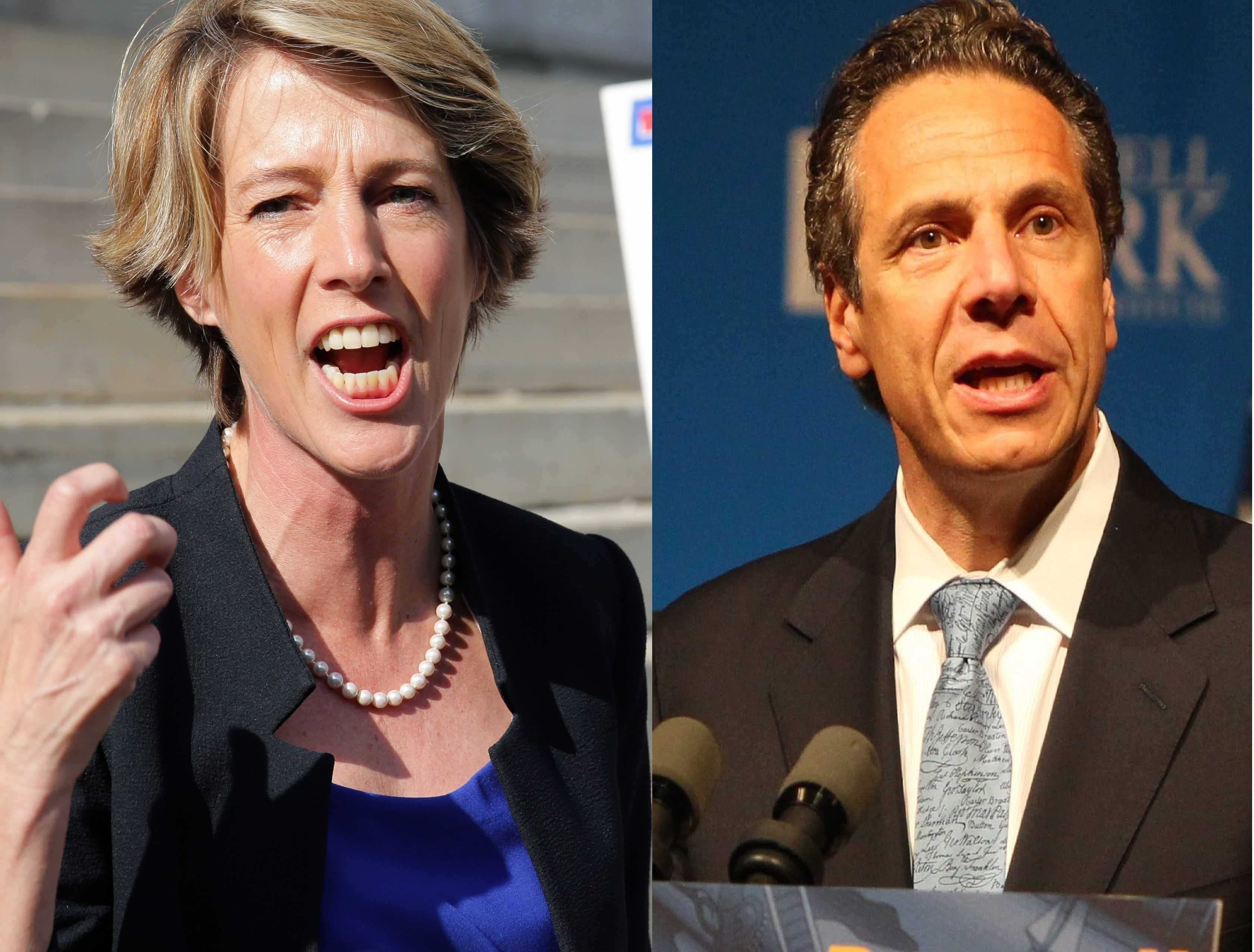 Fordham University law professor and liberal activist Zephyr Teachout is opposing Gov. Andrew Cuomo in the Deocratic gubernatorial primary on Sept. 9.