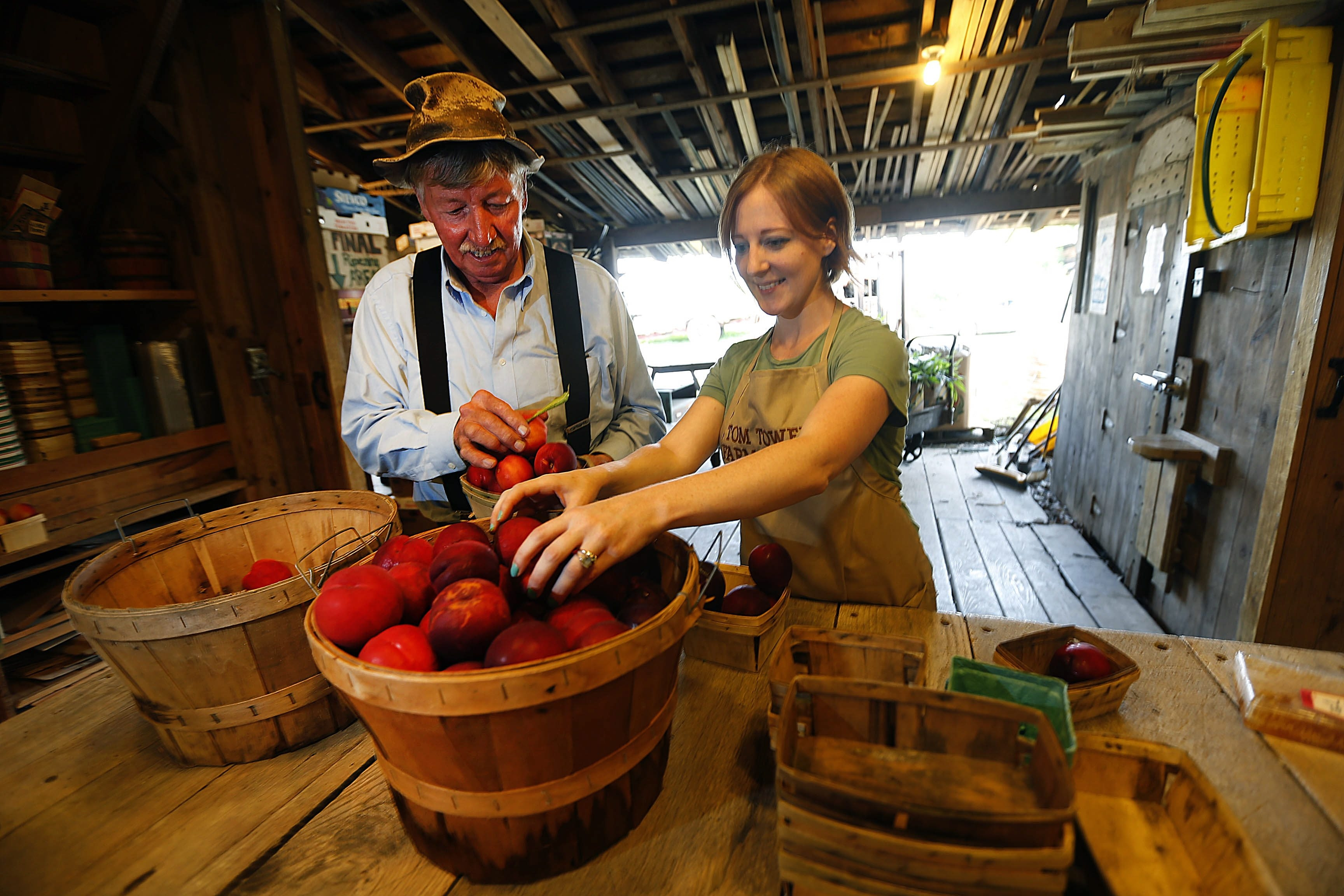 At Tom Tower's farm in Youngstown, 15-year staffer Erica Eaton helps him sort peaches, the specialty, for sale. Up at 2:30 a.m. six days a week and 4:30 the other, he says with pride that if you eat a locally grown peach, the chance is 80 percent it's a Tower.
