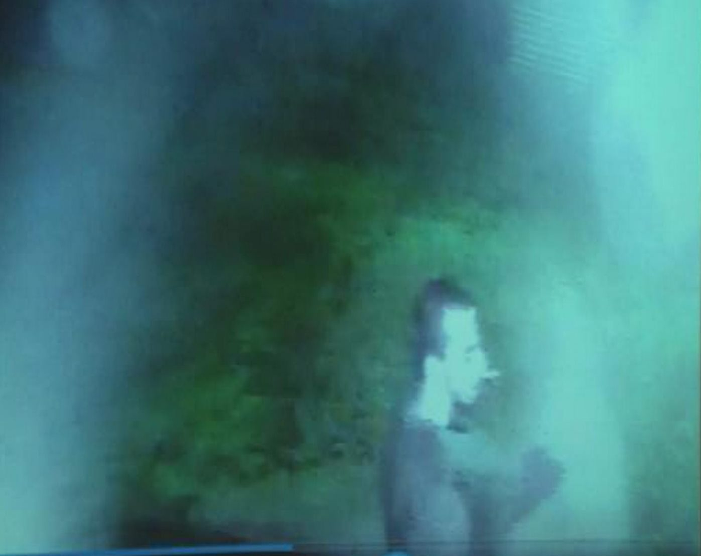 North Tonawanda police have released an image of a suspect in the rash of fires early this morning.