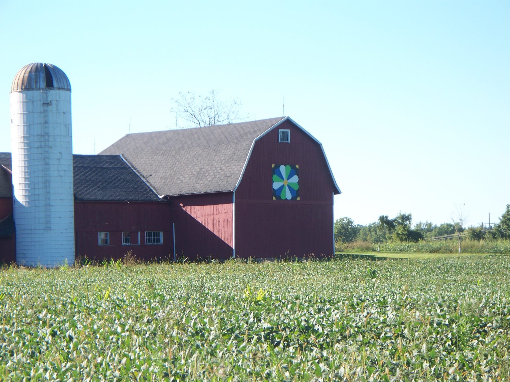 There are four driving trails for viewing the Barn Quilts of LeRoy, which began in 2011 as a project for the town's 2012 bicentennial1