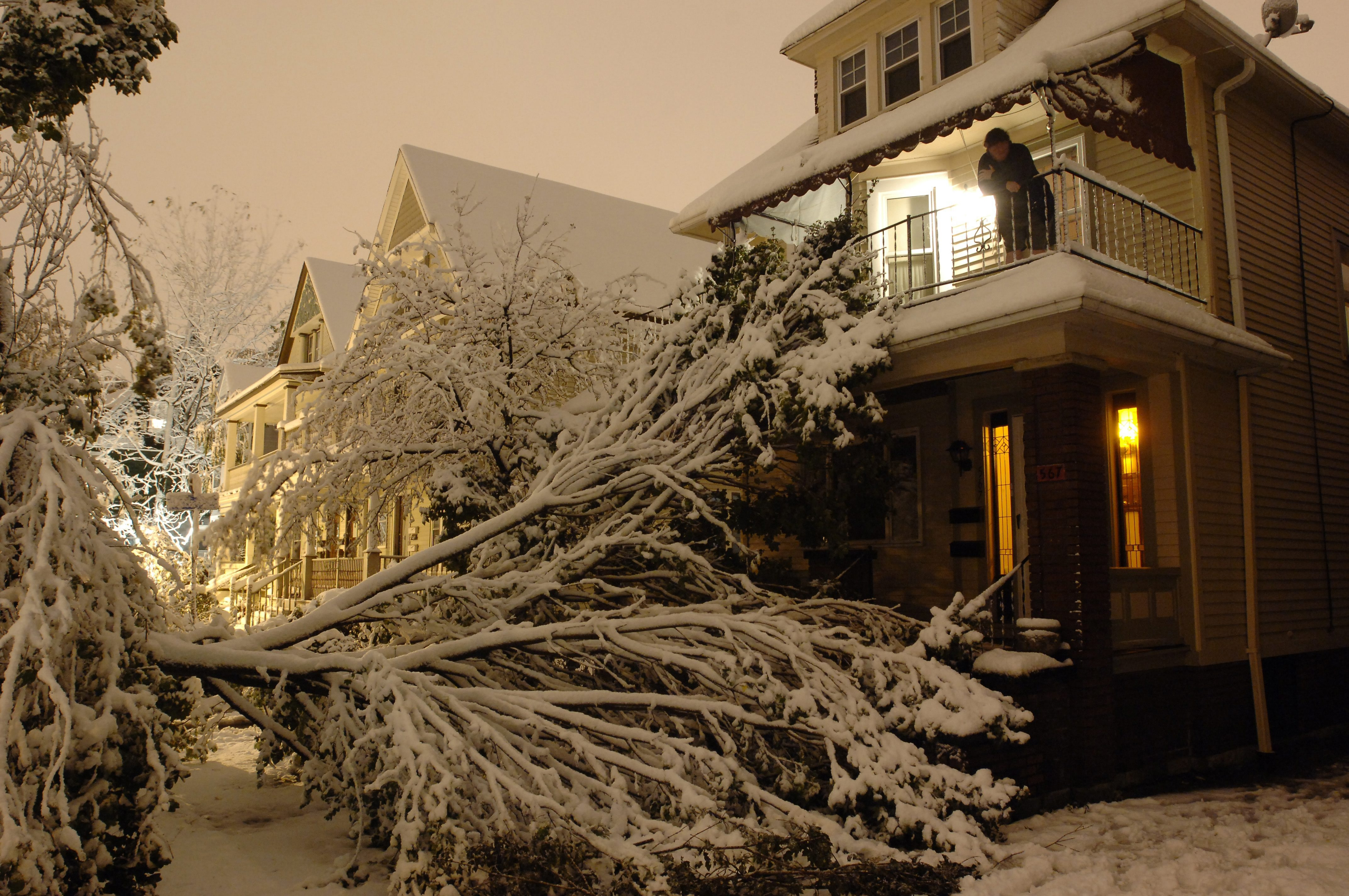 The top half of a large box maple tree rests on the home of Joan Casey (on porch) after a bizarre October snowstorm Oct. 12, 2006. (Derek Gee/Buffalo News)