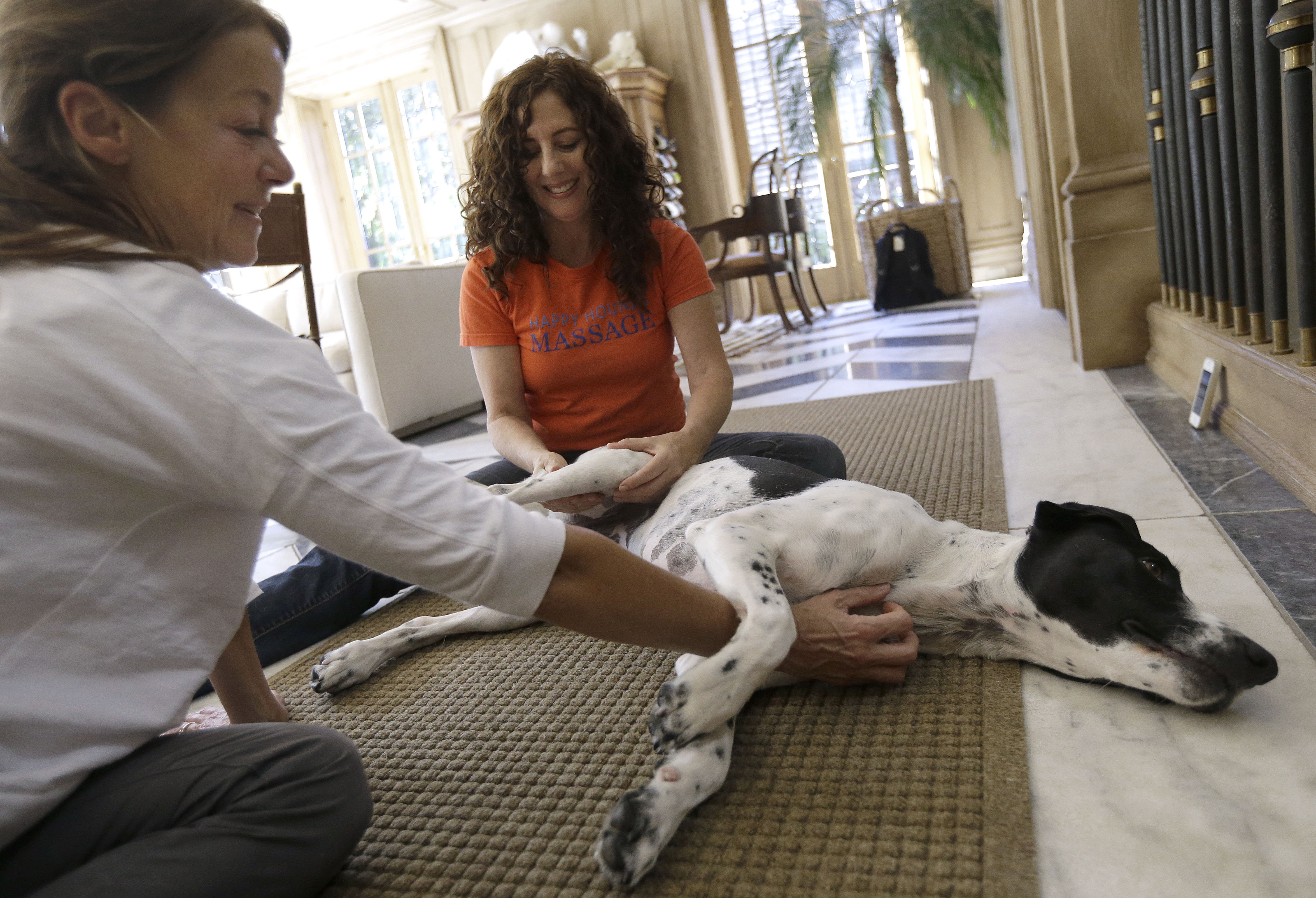 Shelah Barr, center, gives a massage to Dewie, 2, at the home of Laurie Ubben in San Francisco. Practitioners say pet massage can prevent problems in younger animals and alleviate them in older ones.