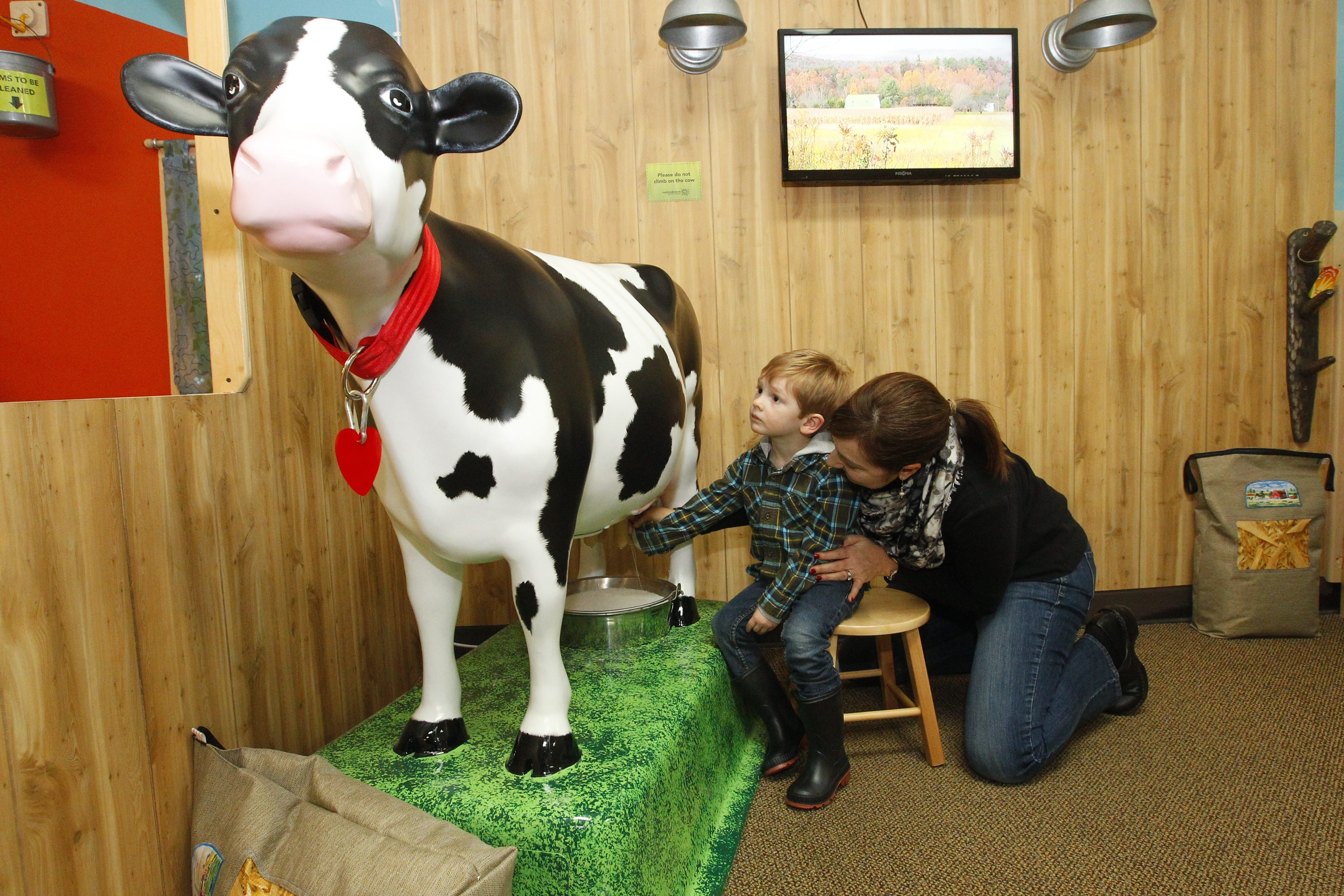 Jill Pawlik and her son Finnigan, 3, of Lancaster, learn how to milk a cow Friday at Explore & More in East Aurora. The children's museum is offering family activities in the coming week.