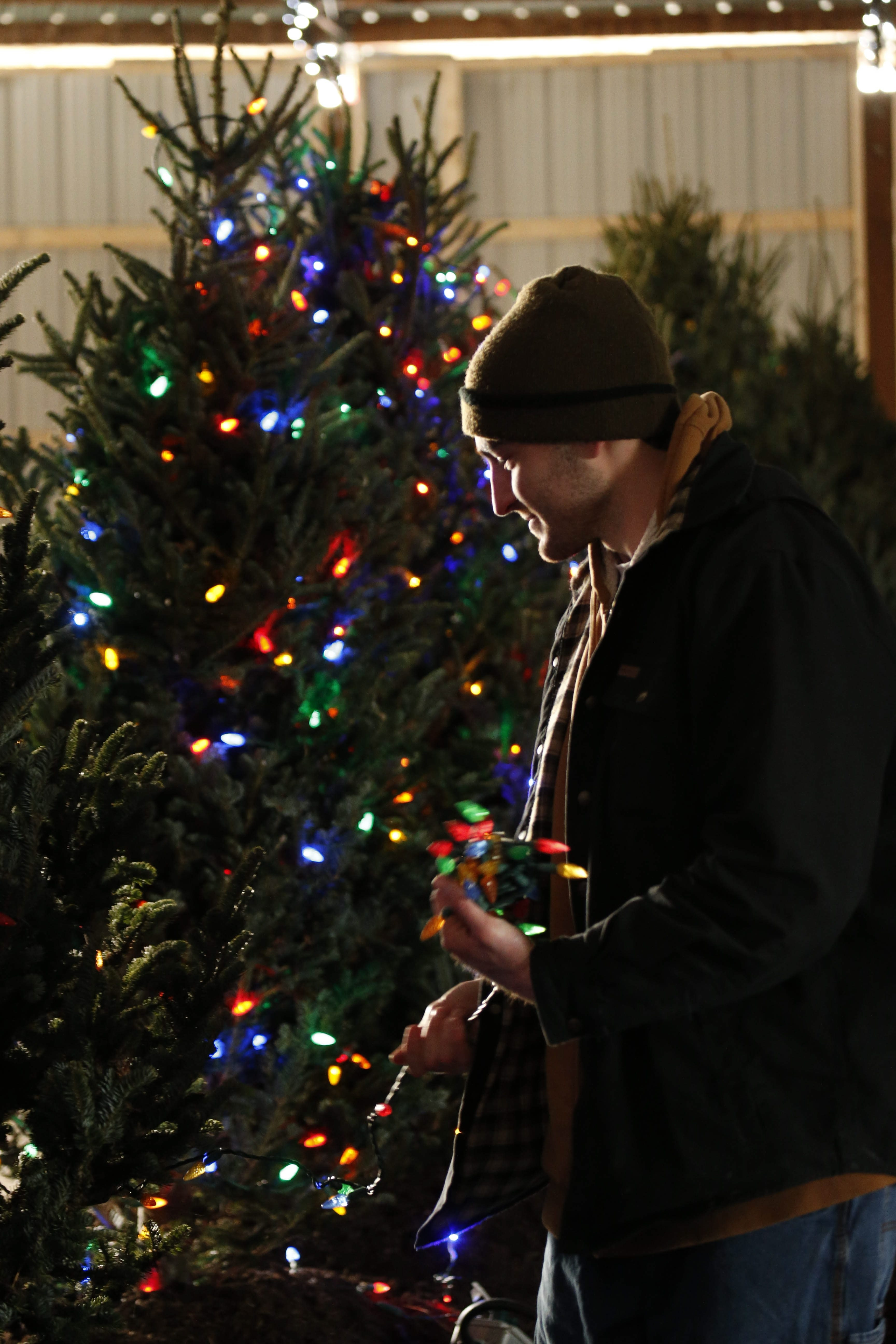 The Fairgrounds Festival of Lights brightens the holiday season from 5 to 9 p.m. Saturday and Sunday at the Hamburg Fairgrounds.