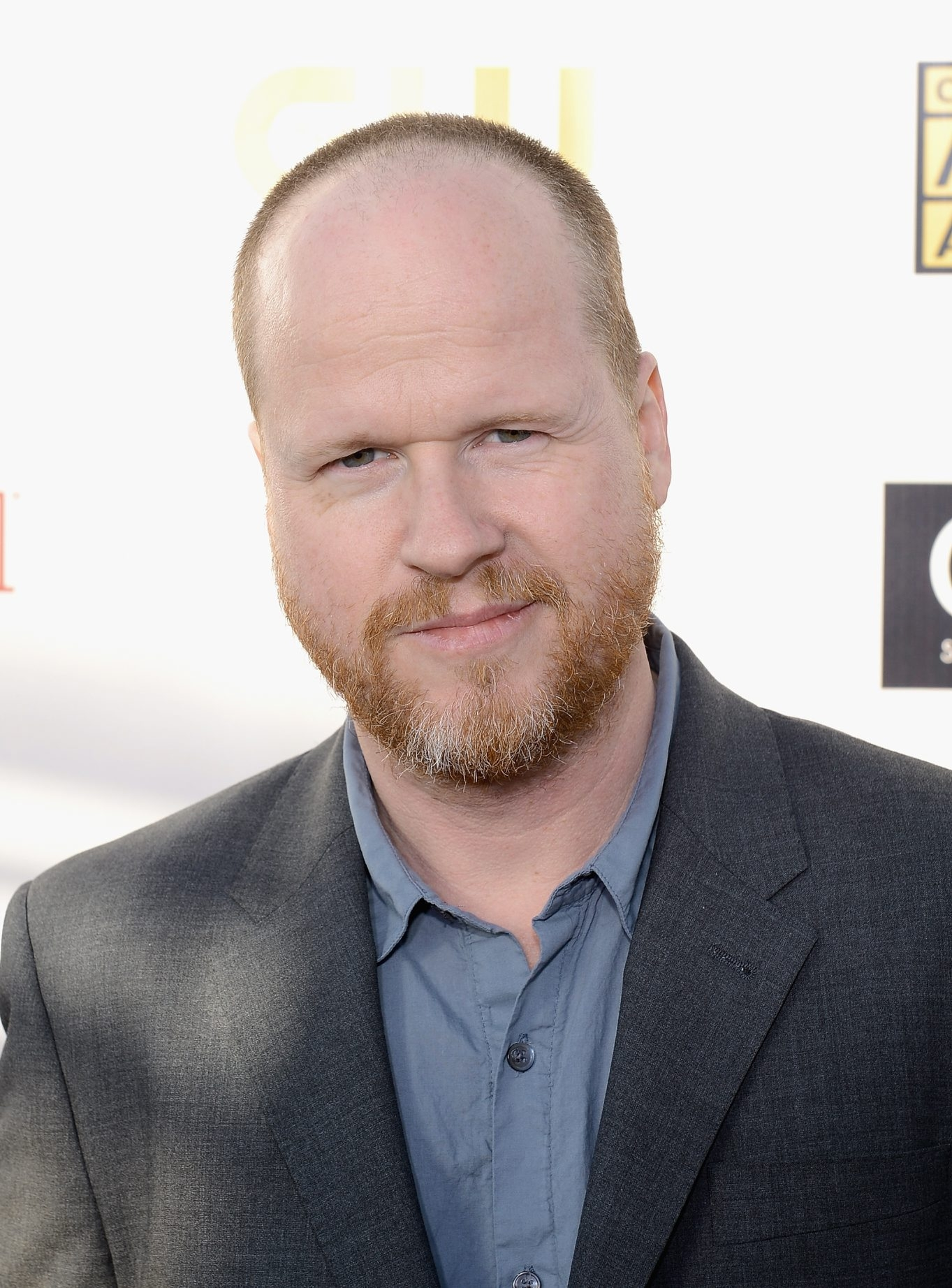 """Joss Whedon broke into the mainstream with blockbuster """"The Avengers."""""""