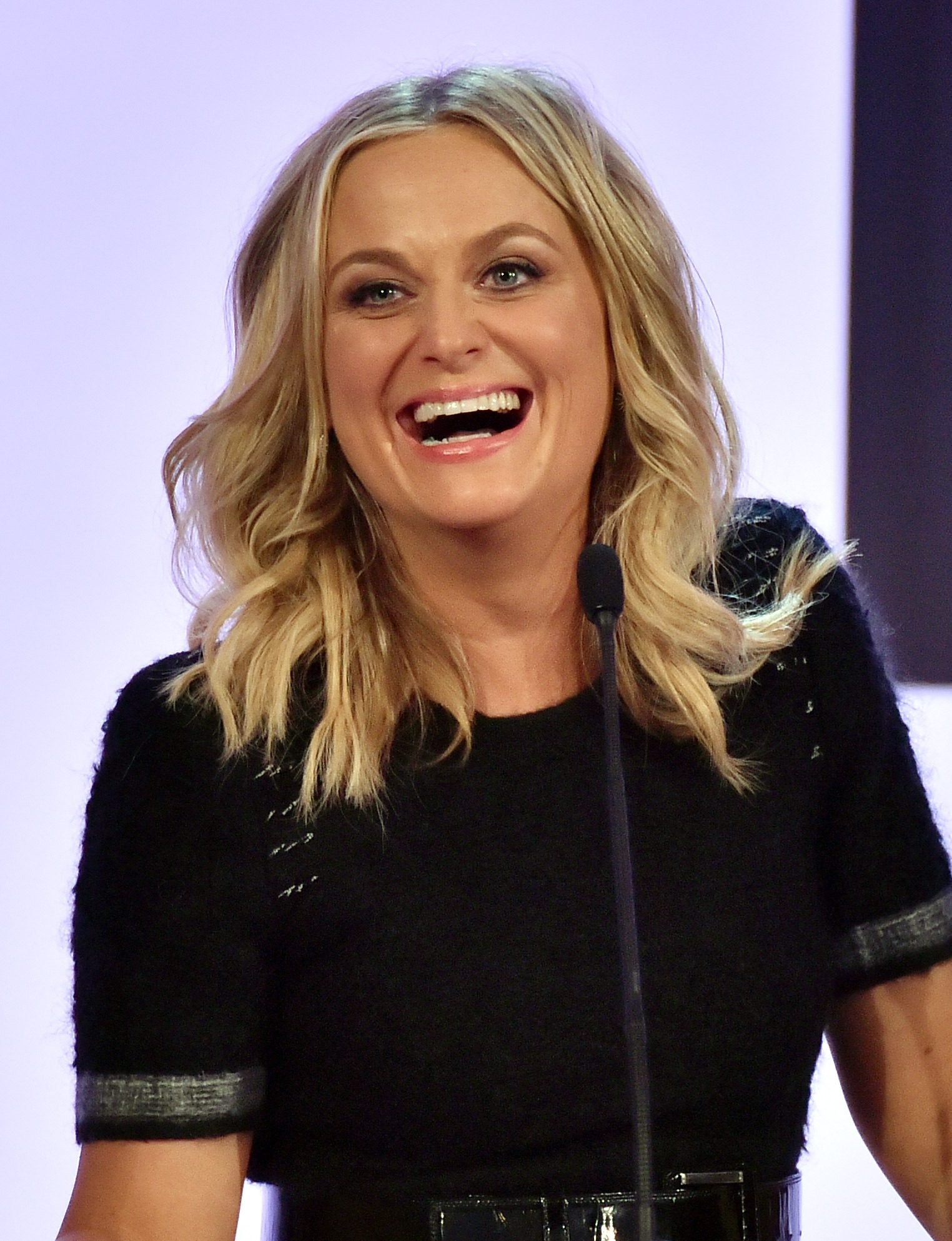 Amy Poehler's book feels like someone convinced her it would be a good idea and she reluctantly agreed.