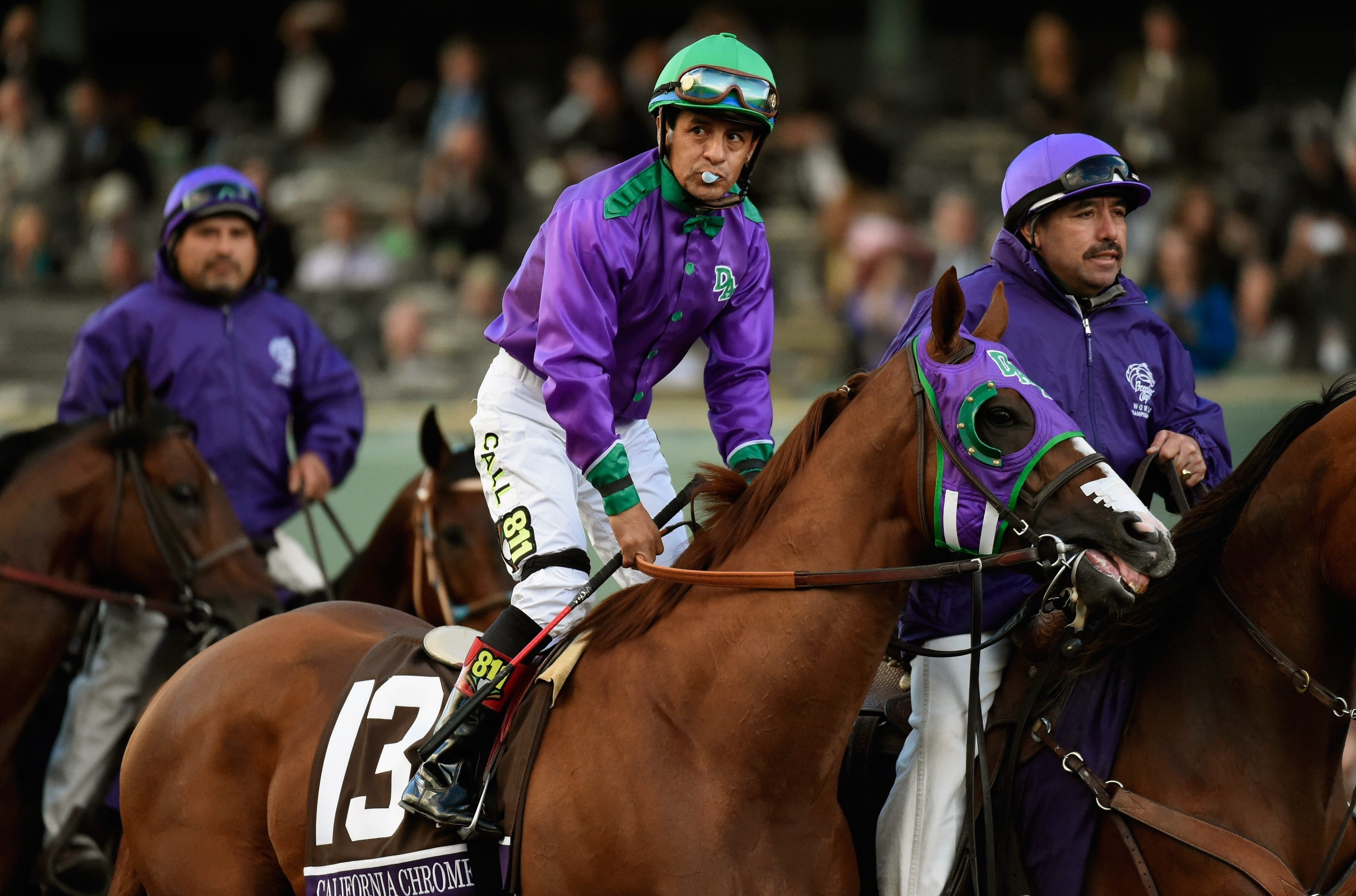 California Chrome is still in the game and has a big race next weekend at Santa Anita in California.