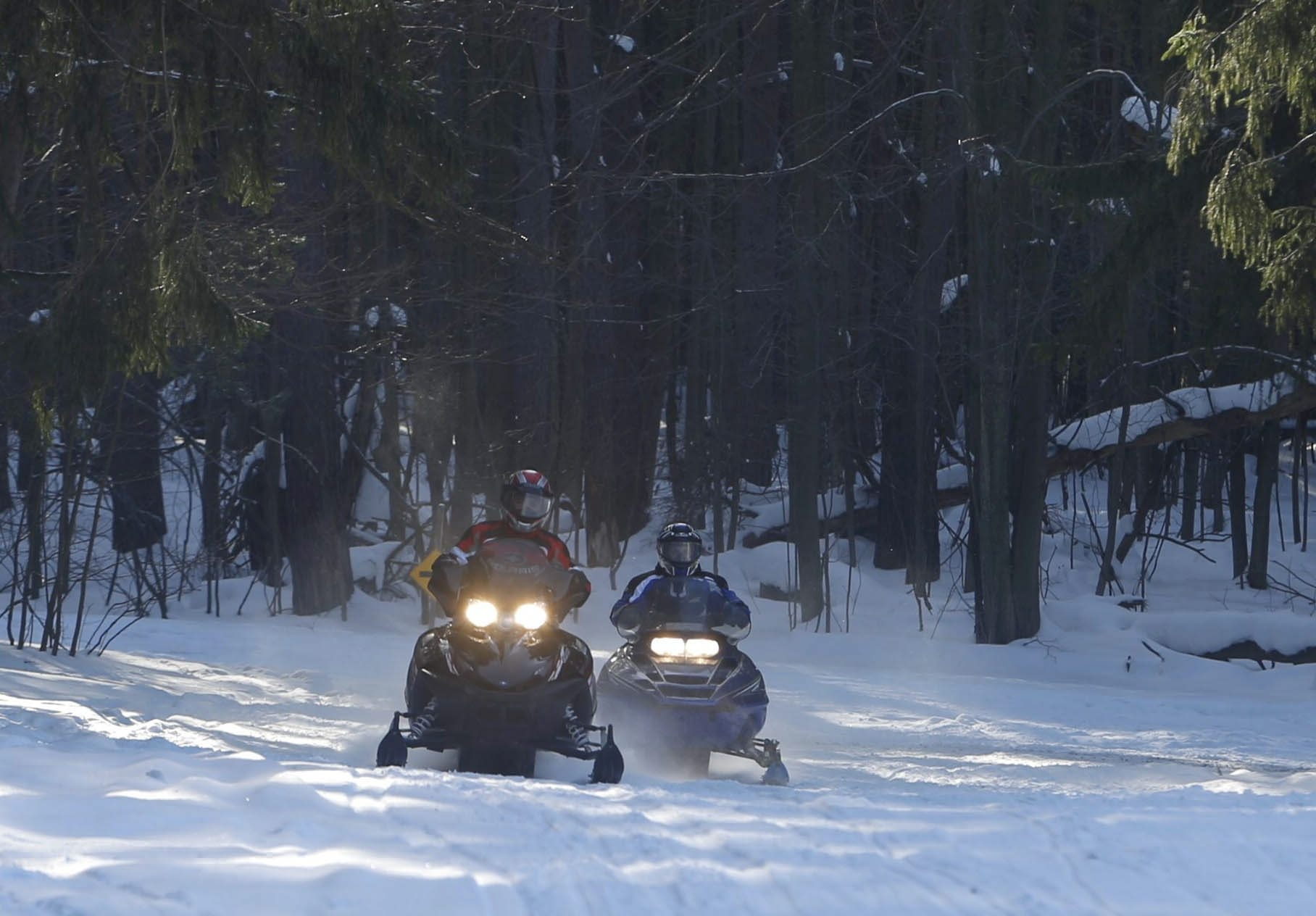 Snowmobilers ride through Emery Park in South Wales on Jan. 25. The sport is thriving 50 years after the first sled hit the trails here.