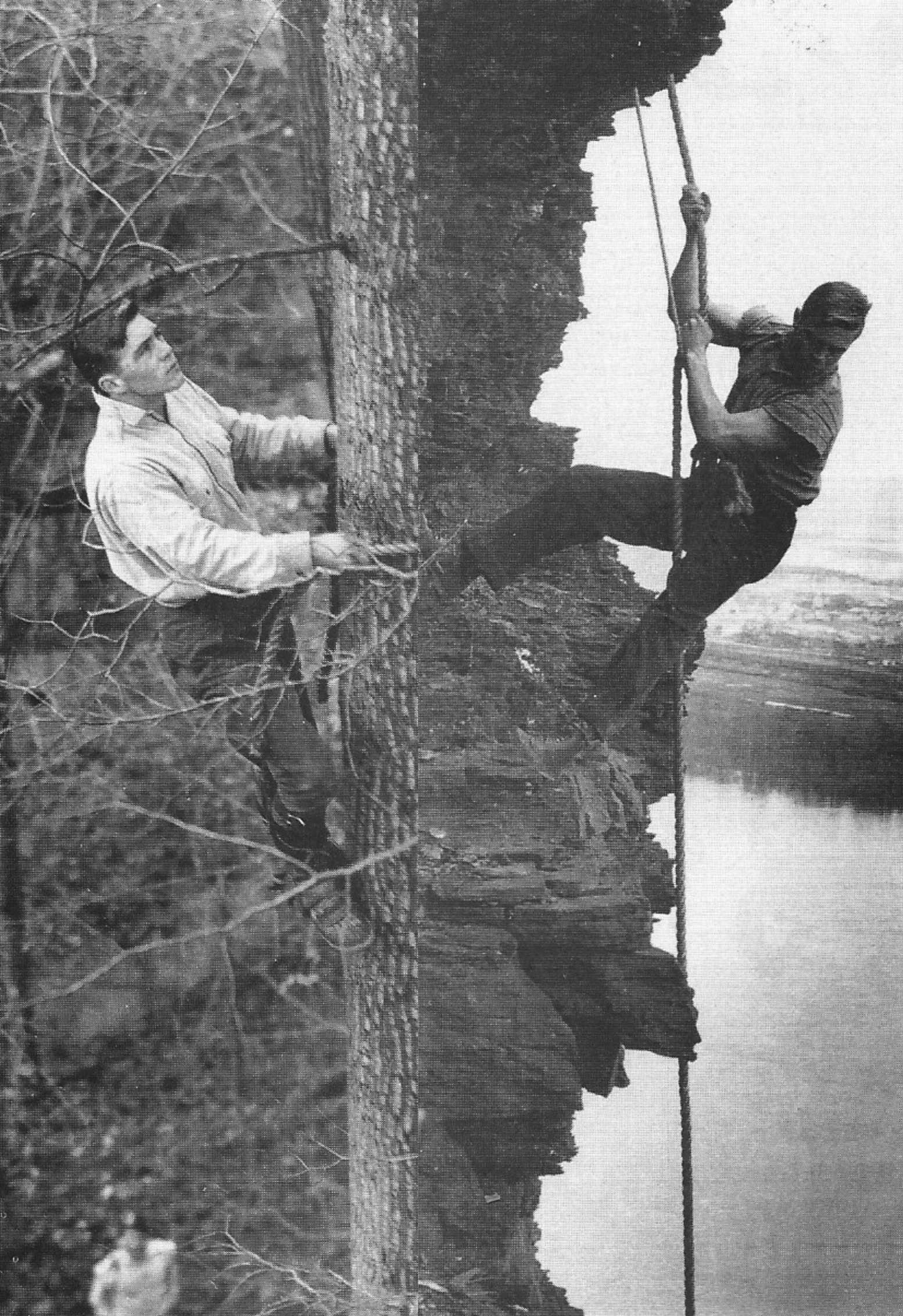 Wildlife pioneers Frank and John Craighead, who were identical twins, climbed tall trees and rappelled down steep cliffs to photograph raptors in their nests.