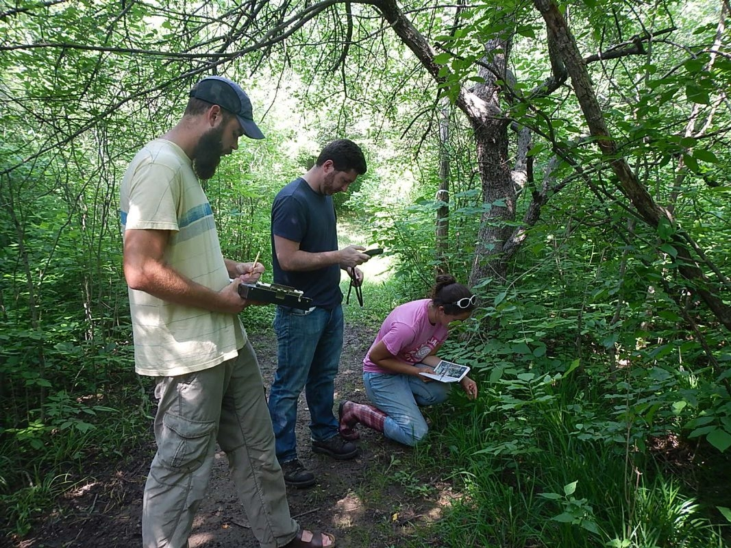 Stewards Andrew Stadler, Patrick Gormley and Angela Driscoll identify plant life and record their observations during a 2014 invasive species survey.