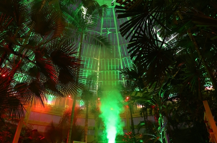 """Weber's Agave, at left, is shown in red light as part of """"Lumagination,"""" the light show extravaganza at the Buffalo & Erie County Botanical Gardens. Above, the main Palm Room is shown on Monday. The show starts Wednesday. (Photos by Mark Mulville/Buffalo News)"""