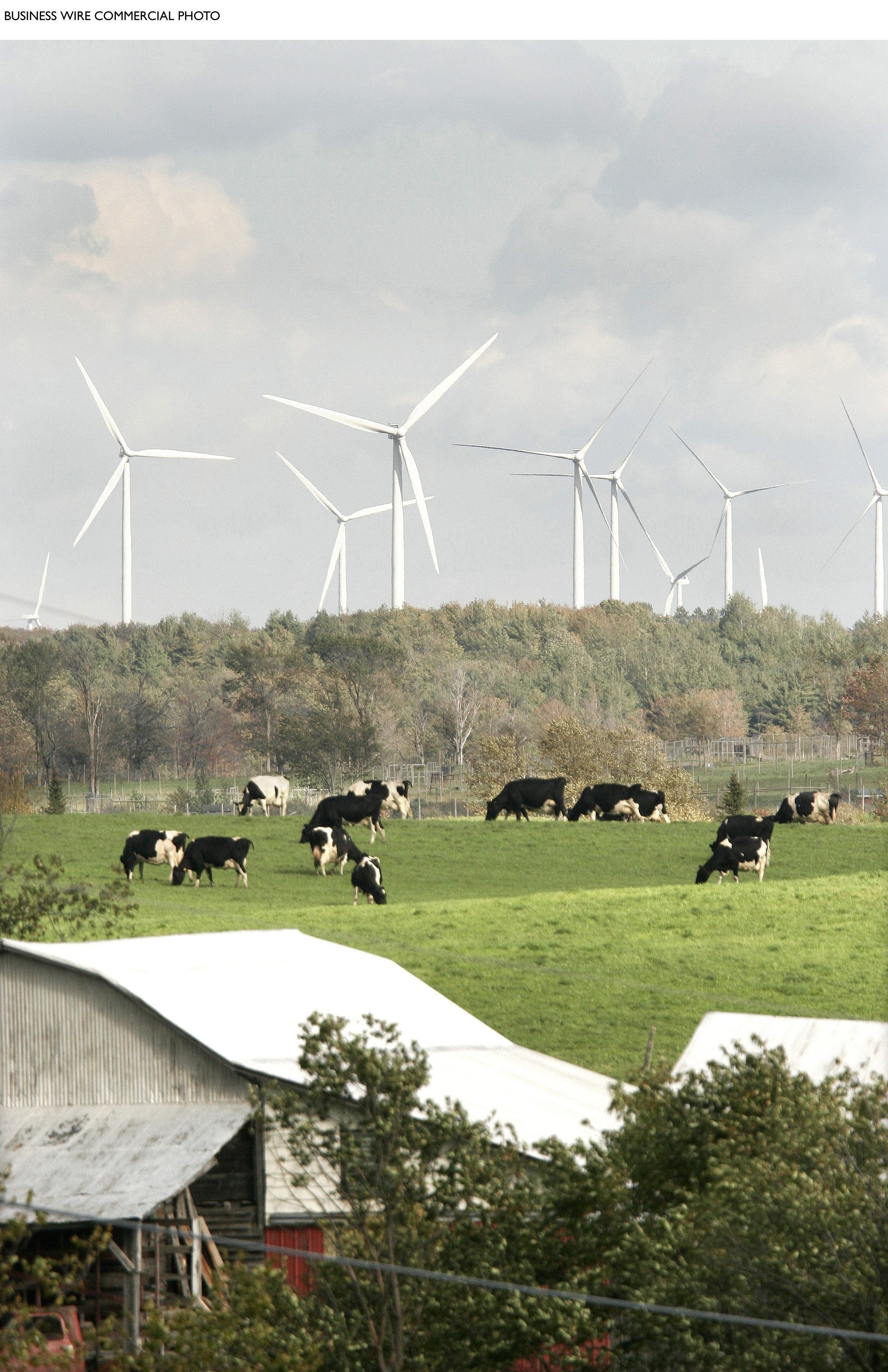 "The biggest windfarm in New York state, owned by ScottishPower's US subsidiary and its local partner, was formally opened today (Tuesday) near Syracuse. Maple Ridge's initial 140 turbines will soon be increased to 195, generating 320MW of clean, renewable electricity to power 160,000 average New York households. The project, which will meet around two per cent of the state's residential power needs, is co-owned by ScottishPower subsidiary PPM Energy and Horizon Wind Energy (owned by Goldman Sachs). New York state plans to generate a quarter of its electricity through renewable power by 2013, one of the most aggressive ""green"" policies in the US."