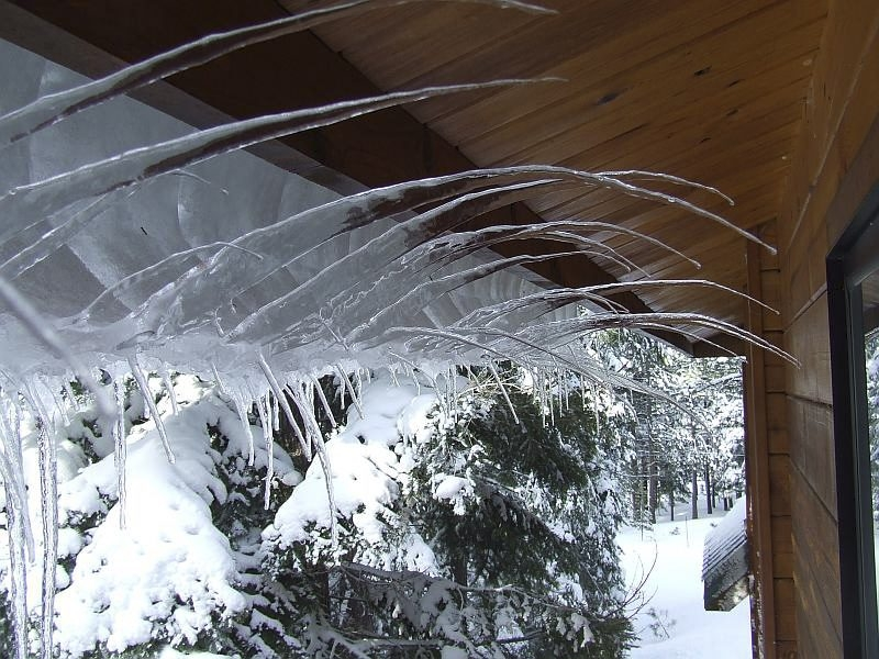 Nature's beauty is revealed in these curved natural icicles sprouting from the edge of a roof in California this winter.