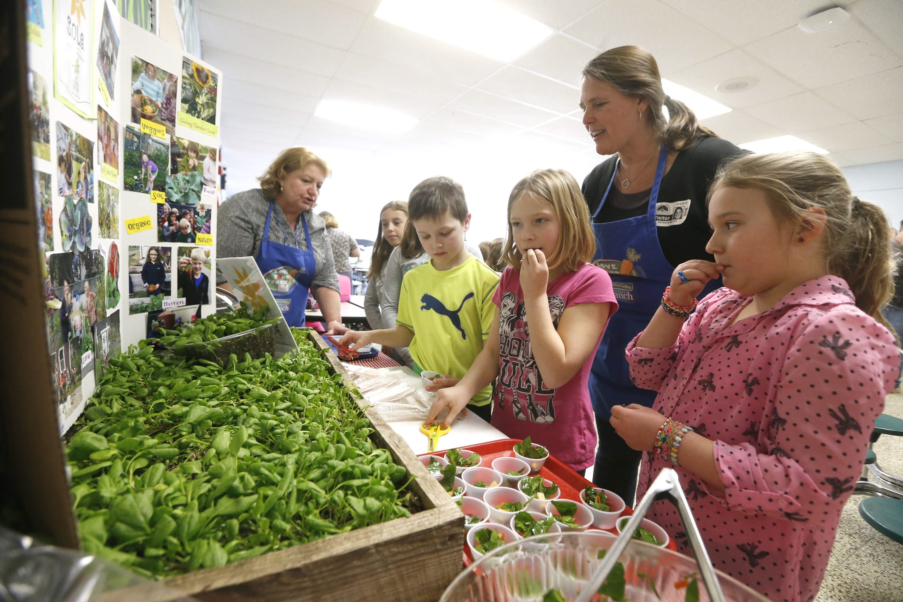 Boston Valley Elementary students take a taste test guided by food coordinators Linda Muldoon, left, and Tricia Miller, second from right.